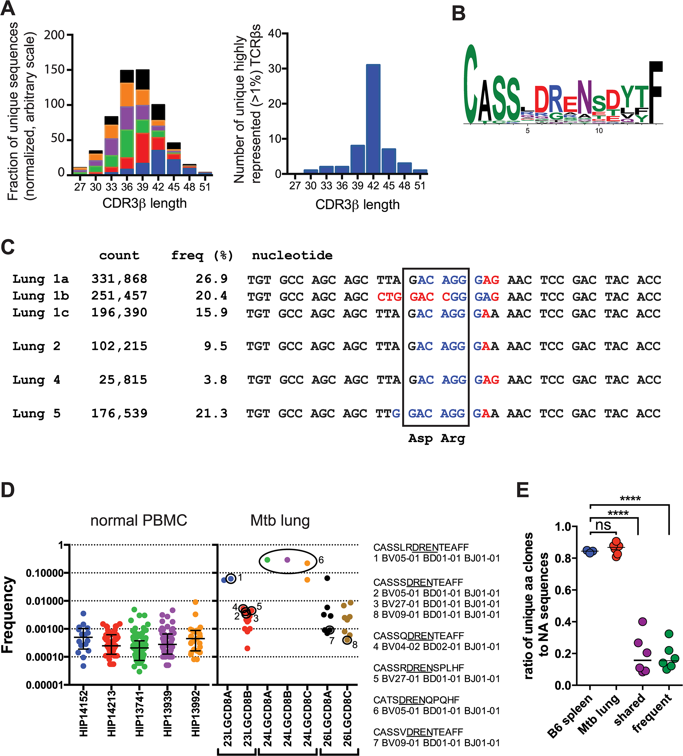 TB10.4-specific CD8+ T cells are selected during infection.