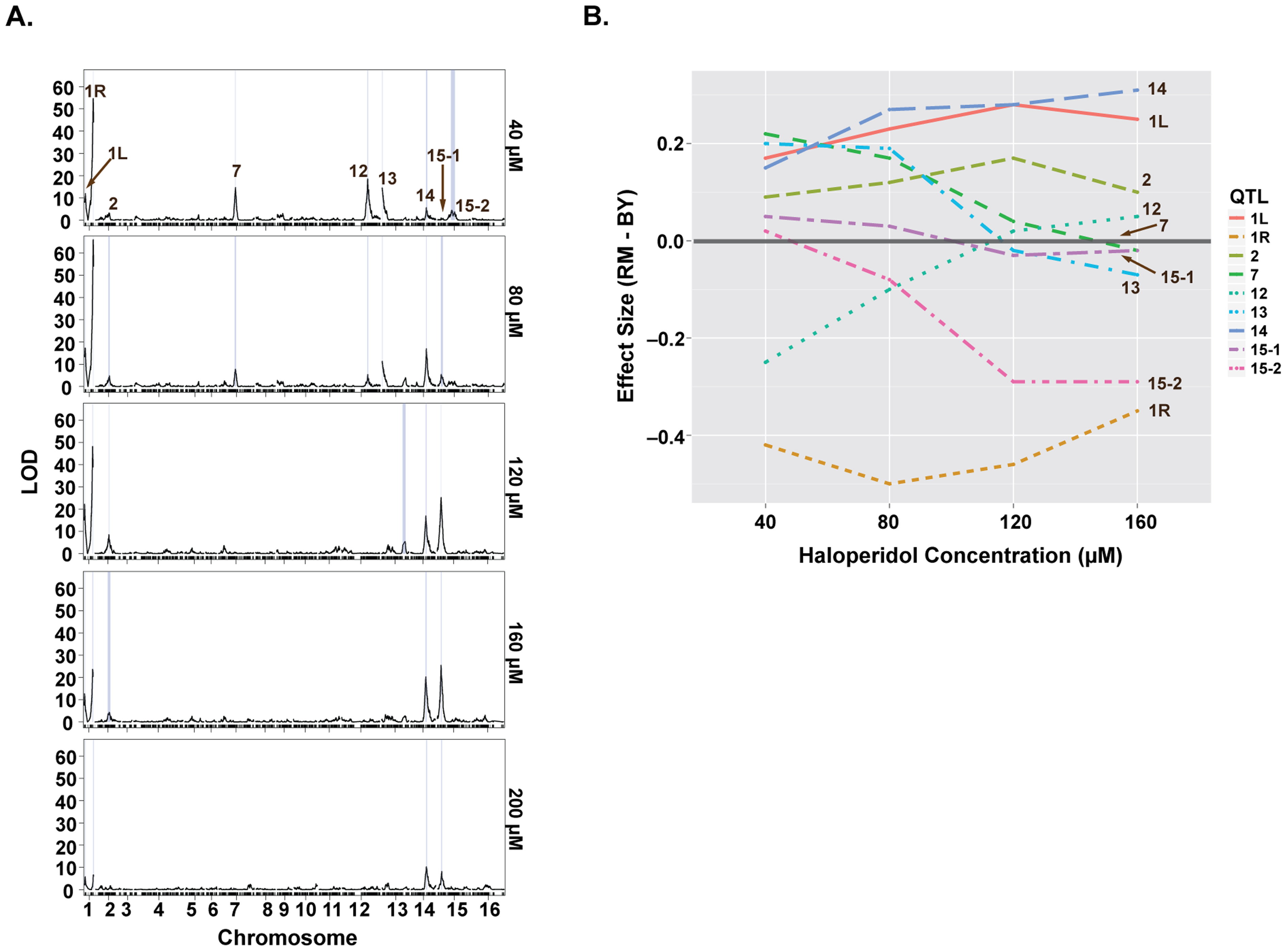 Loci underlying haloperidol resistance have dose-dependent effects.