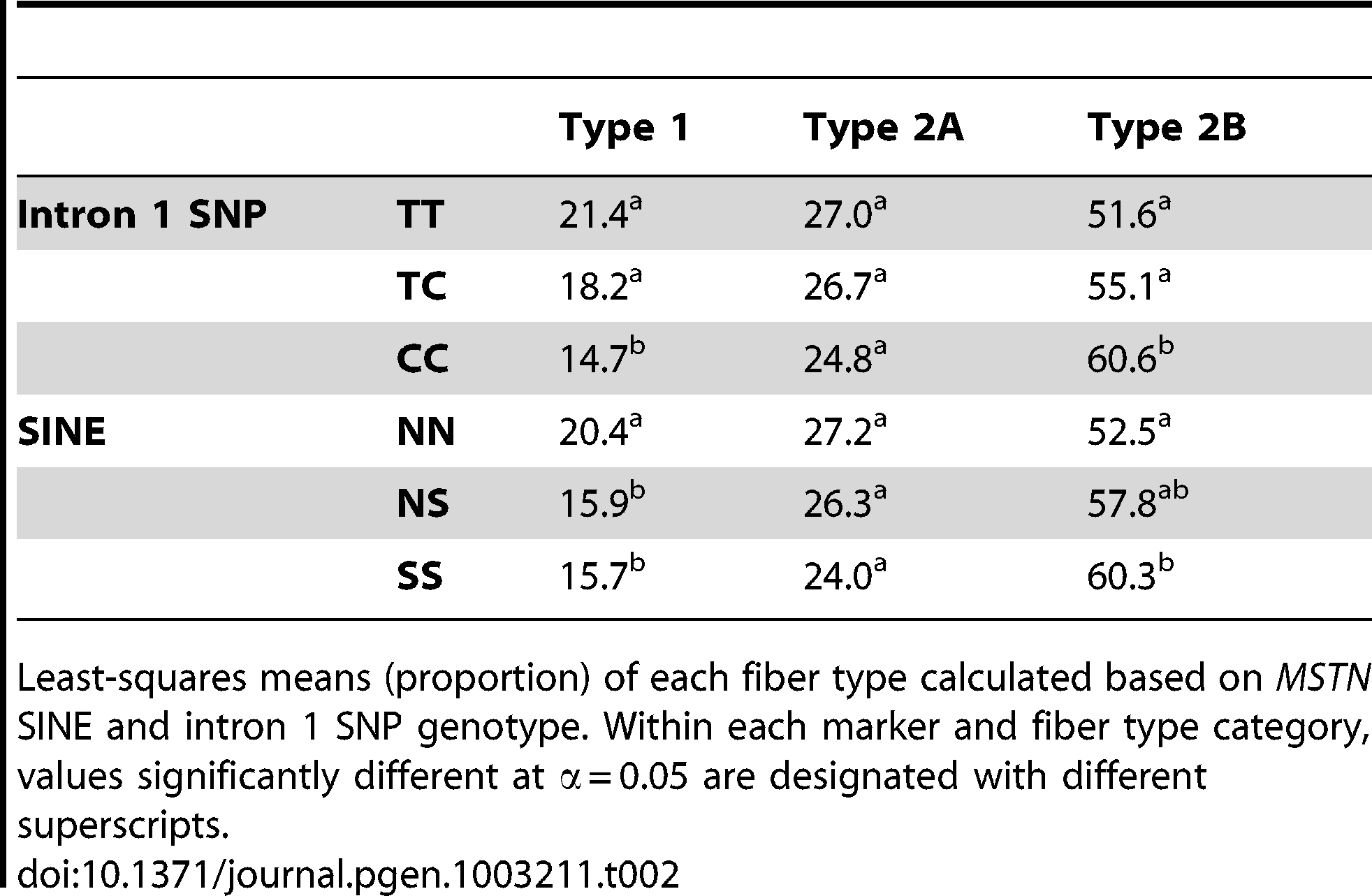 Fiber type proportion based upon <i>MSTN</i> genotype.