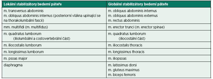 Lokální a globální stabilizátory bederní páteře. Lokální stabilizátory jsou uloženy blíže středu těla (páteři) a obsahují více tonických vláken. Globální stabilizátory se nacházejí blíže tělesnému povrchu a jsou zastoupeny větším množstvím fázických vláken. Lokální a globální stabilizátory se liší funkčně, anatomickou lokalizací, histologickou strukturou i metabolickými ději. Pro udržení neutrálního postavení v páteřním segmentu jsou důležitější lokální stabilizátory (31, 39, 49). Rovnováha bederní páteře je také udržována protilehlým působením ventrální (břišní svaly, bránice, svaly pánevního dna) a dorzální (m. erector trunci) svalové skupiny.