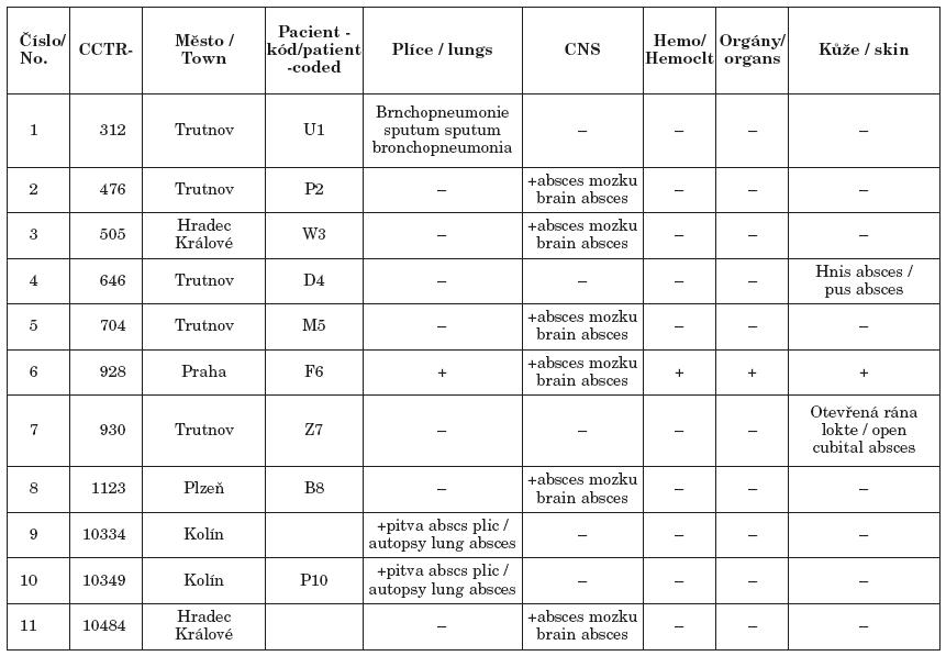 Izoláty N. farcinica v ČR, podle původu klinického materiálu Table 3. Isolates of Nocardia farcinica in the Czech Republic, according to the source of clinical material