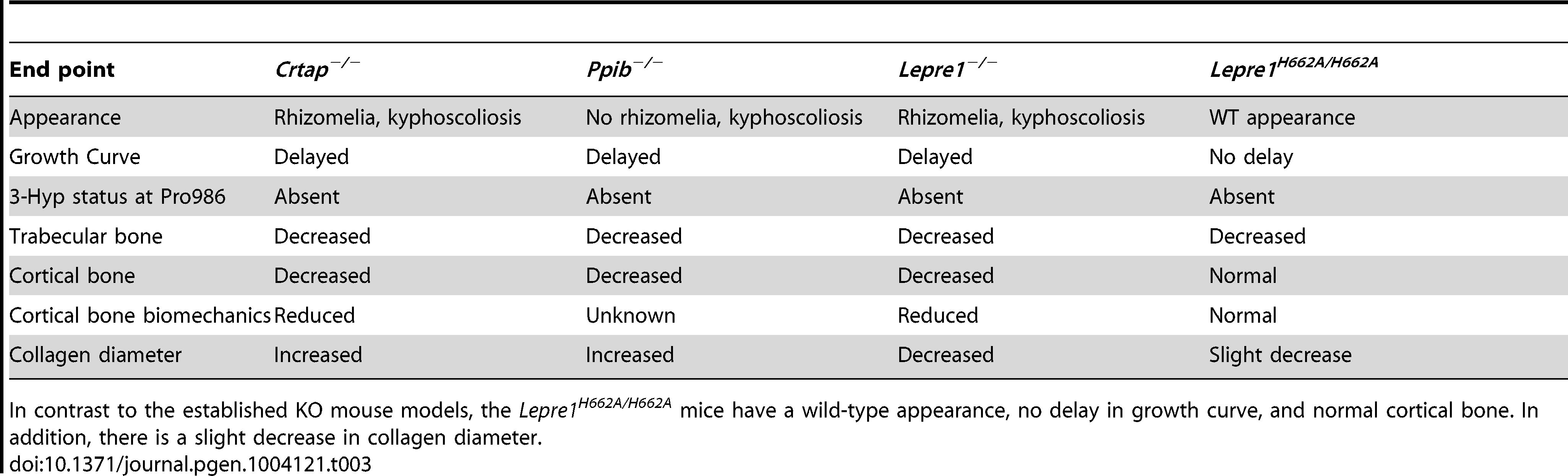 Table comparing <i>Lepre1<sup>H662A/H662A</sup></i> phenotype to established OI mouse models.