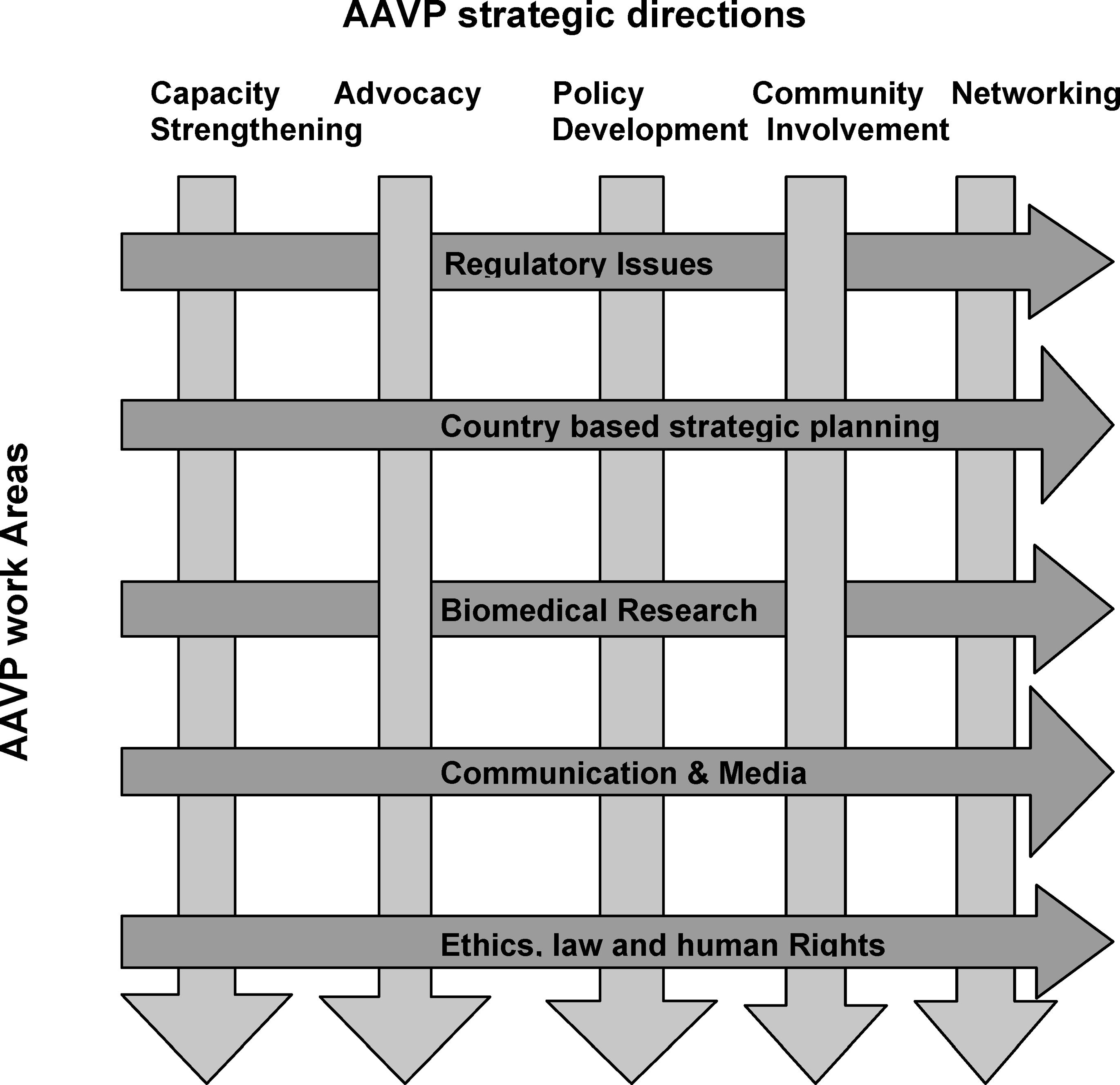 AAVP Strategic Directions and Work Areas