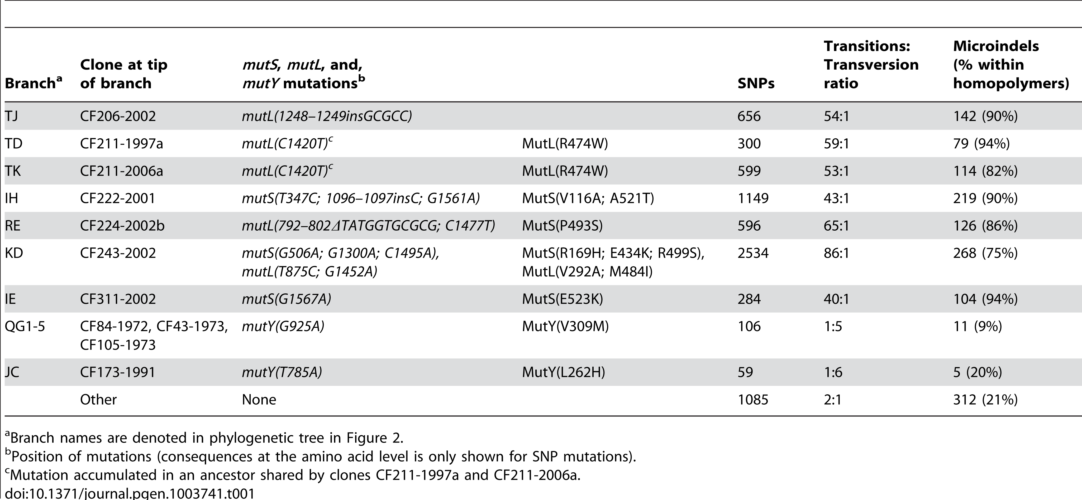 Statistics on mutations accumulated in hypermutable sub-lineages.