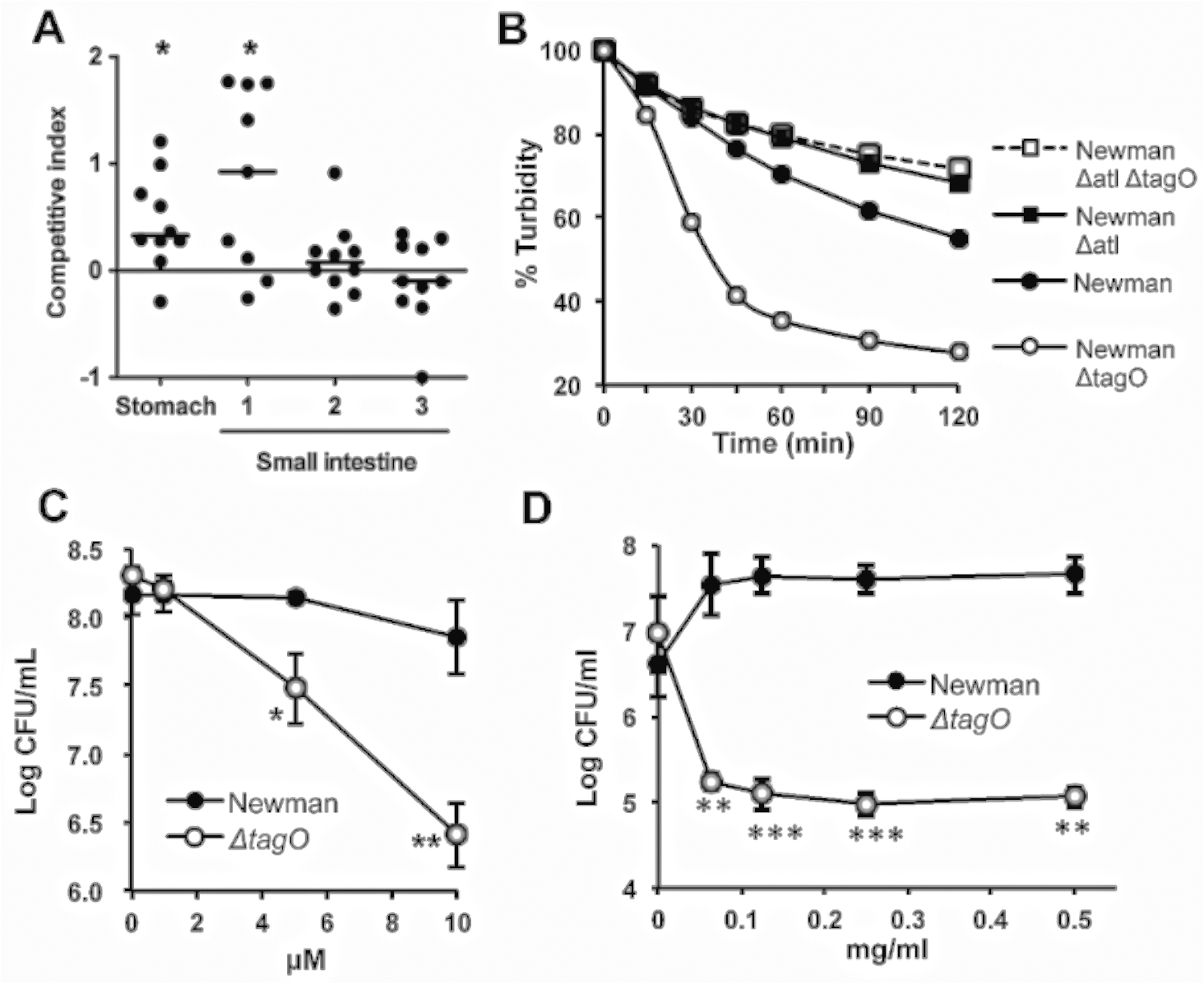 The reduced GI fitness of the Δ<i>tagO</i> mutant correlates with its susceptibility to bile, defensins, and proteases.