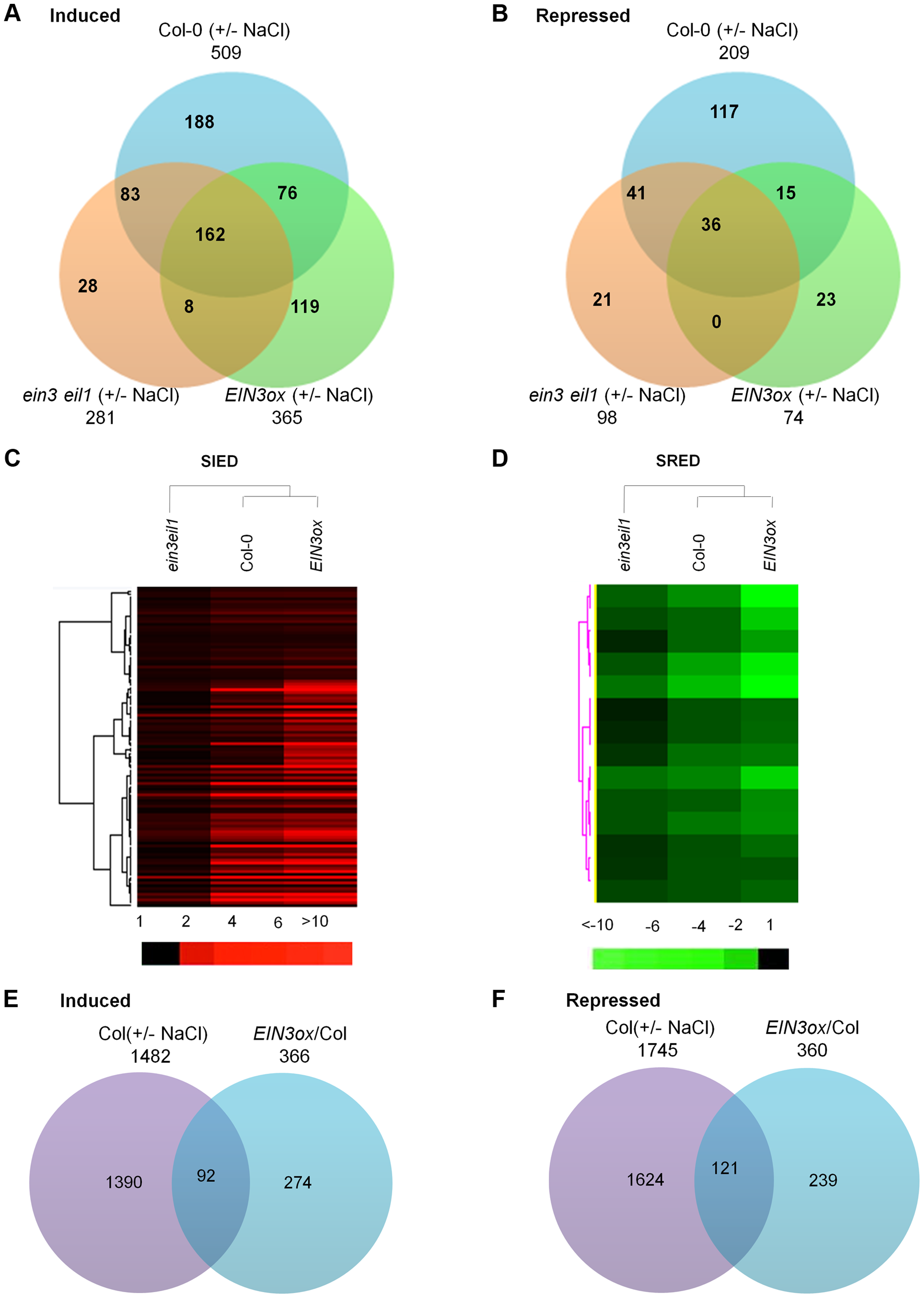 Transcriptome profiling analyses identify salt-regulated EIN3/EIL1-dependent genes.