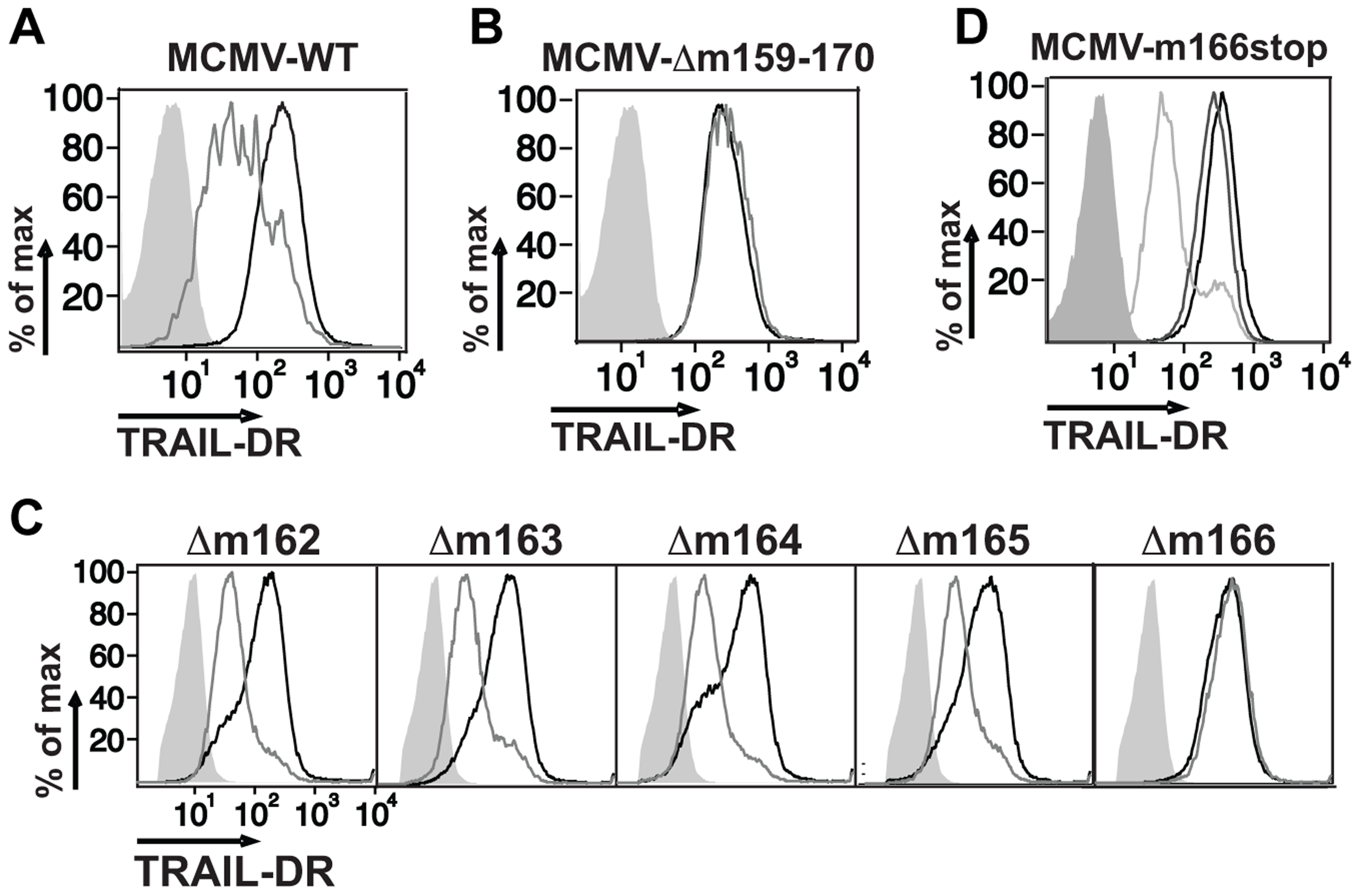 Inhibition of TRAIL-DR cell surface expression by MCMV requires m166.