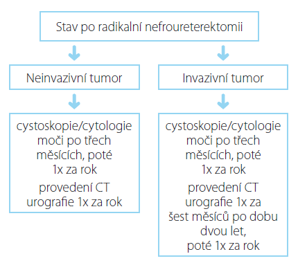 Souhrn doporučených postupů EAU pro follow-up uroteliálního karcinomu horních cest močových po iniciální léčbě (27)