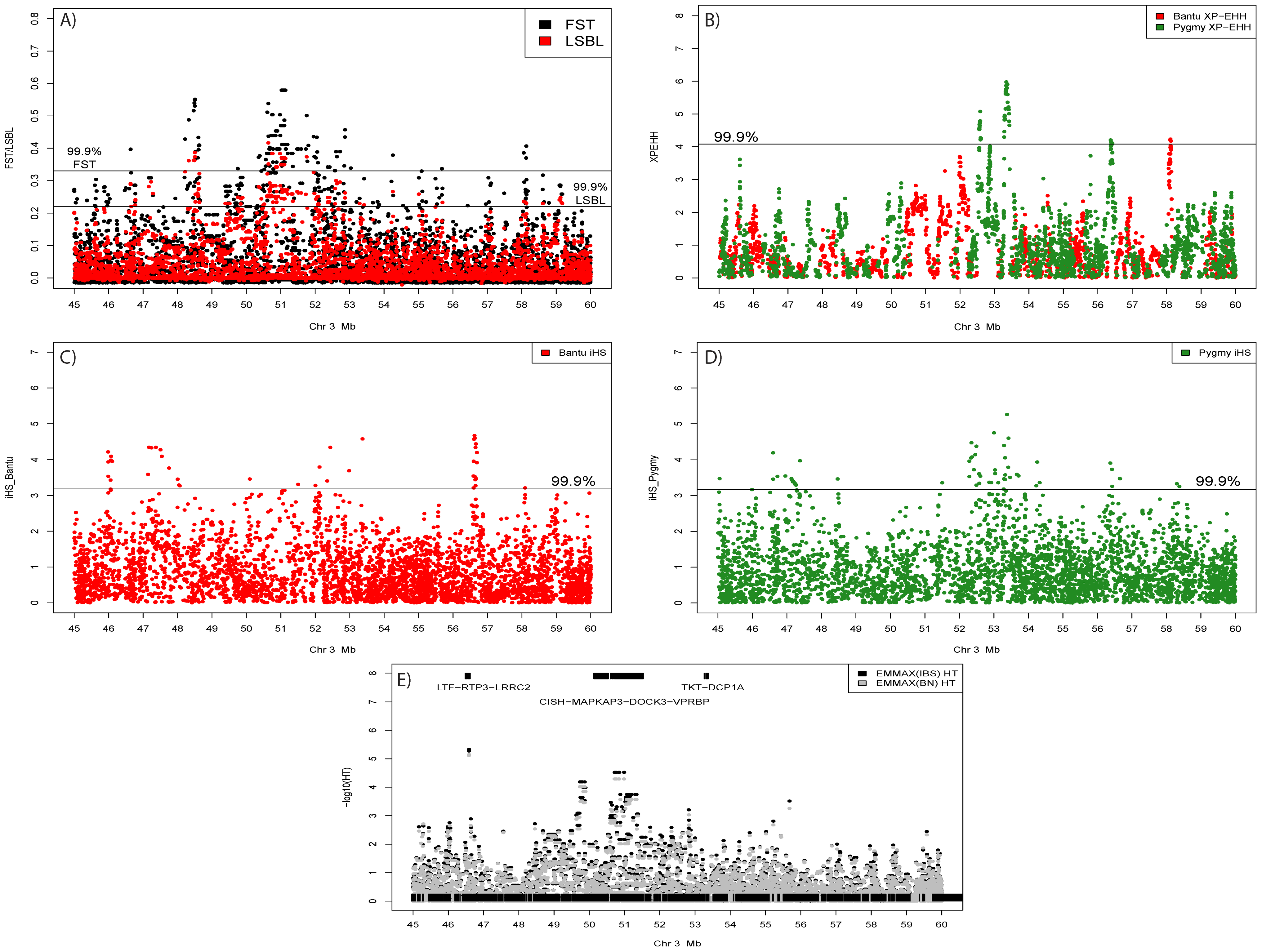 Signals of positive selection and association with height on chromosome 3 between 45 and 60 Mb.