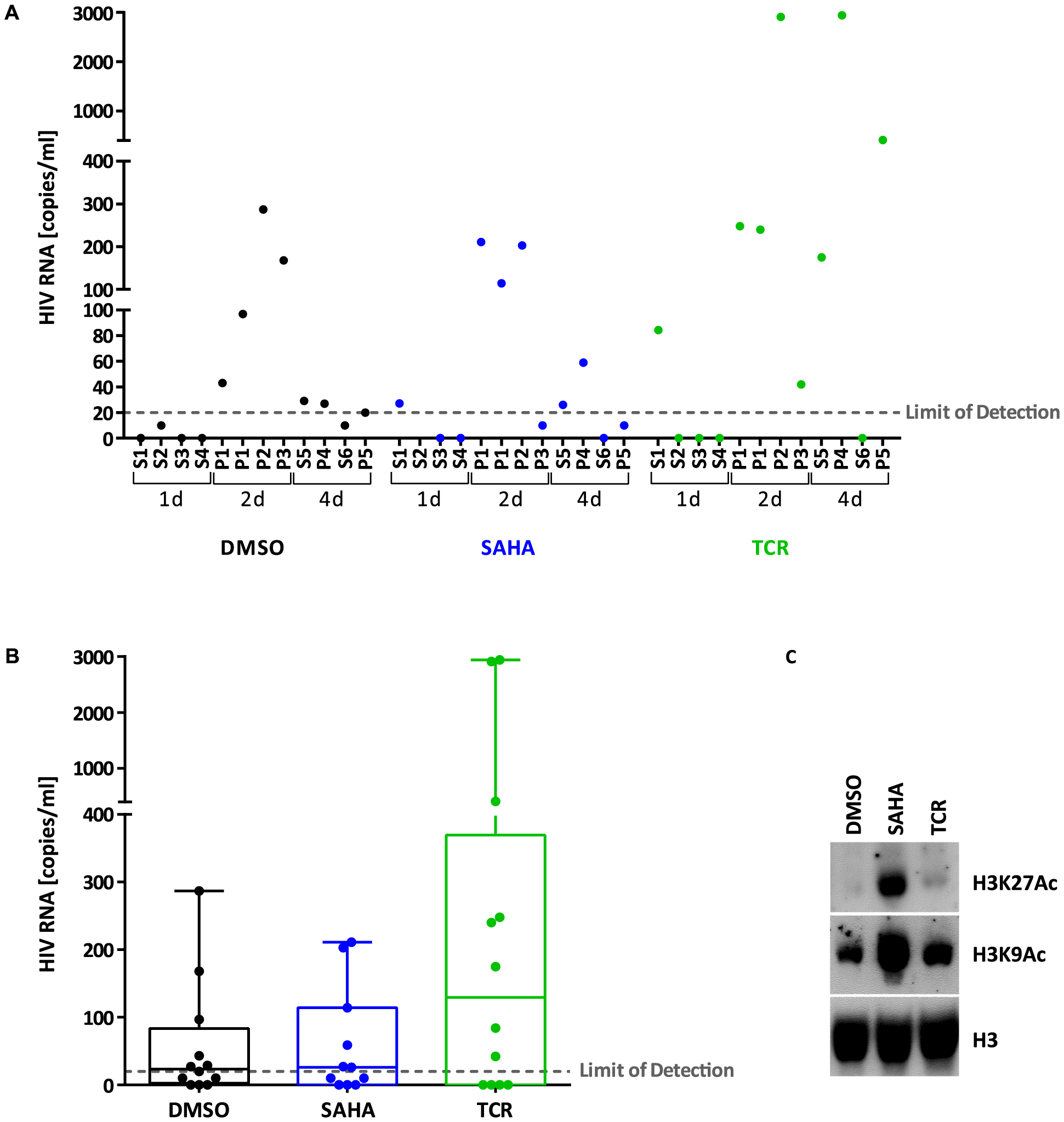 Viral production from latently infected cells <i>ex vivo</i>.