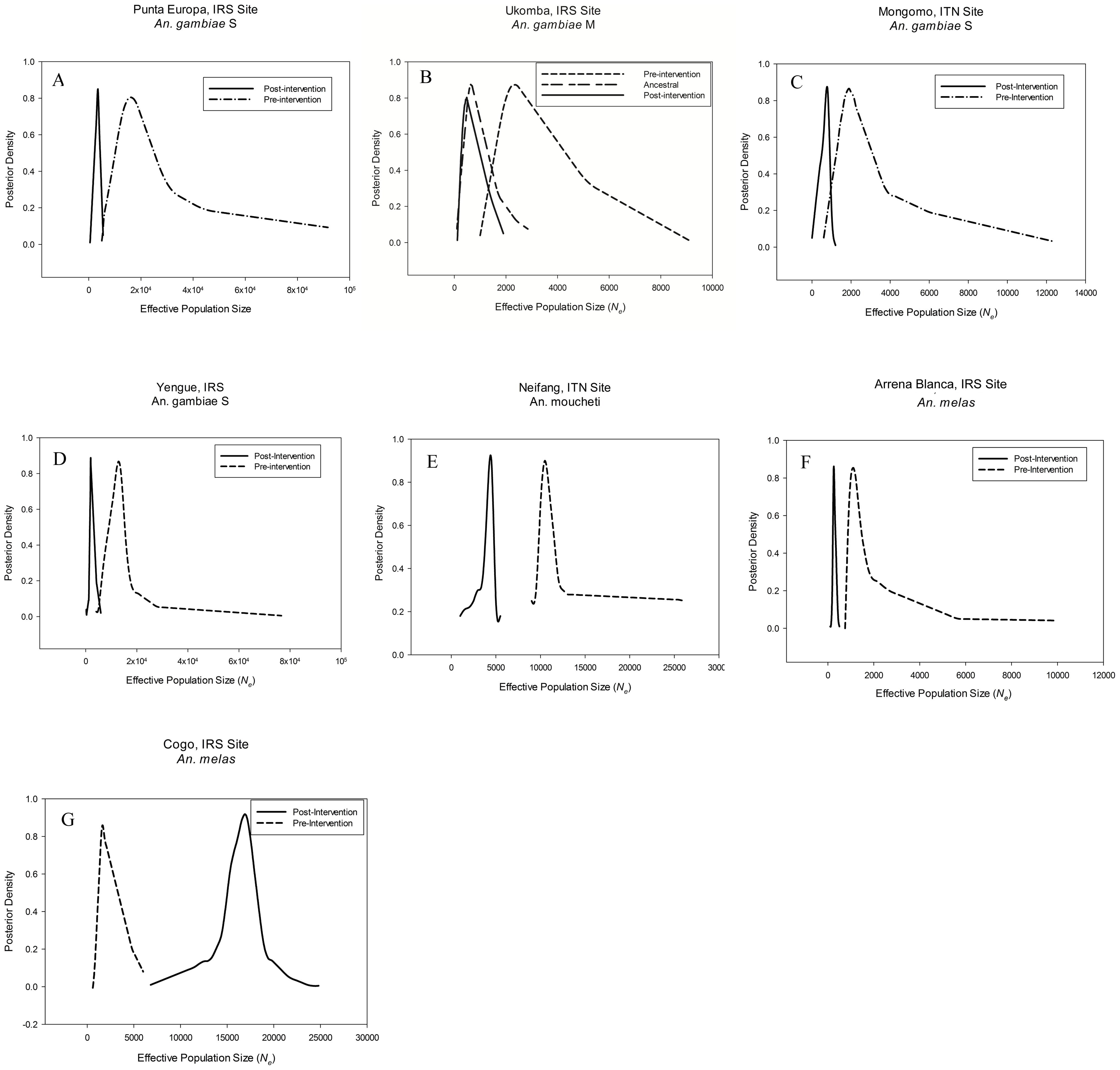 Density plots of effective population size estimates.