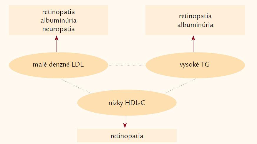 Aterogénna dyslipoproteinémia je asociovaná s vysokým KV rizikom.