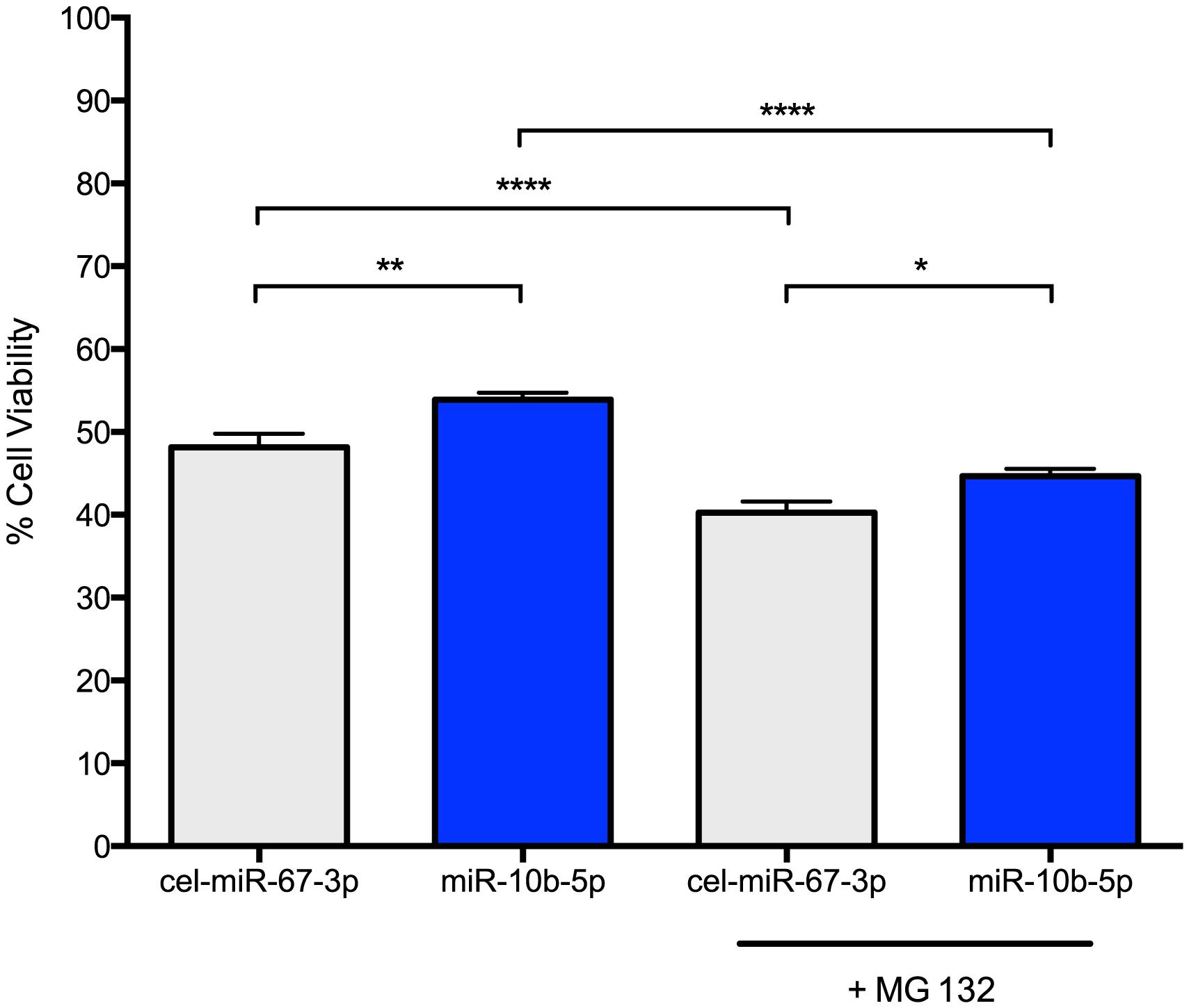 miR-10b-5p overexpressing PC12 Q73 cells exhibit reduced cytotoxicity.