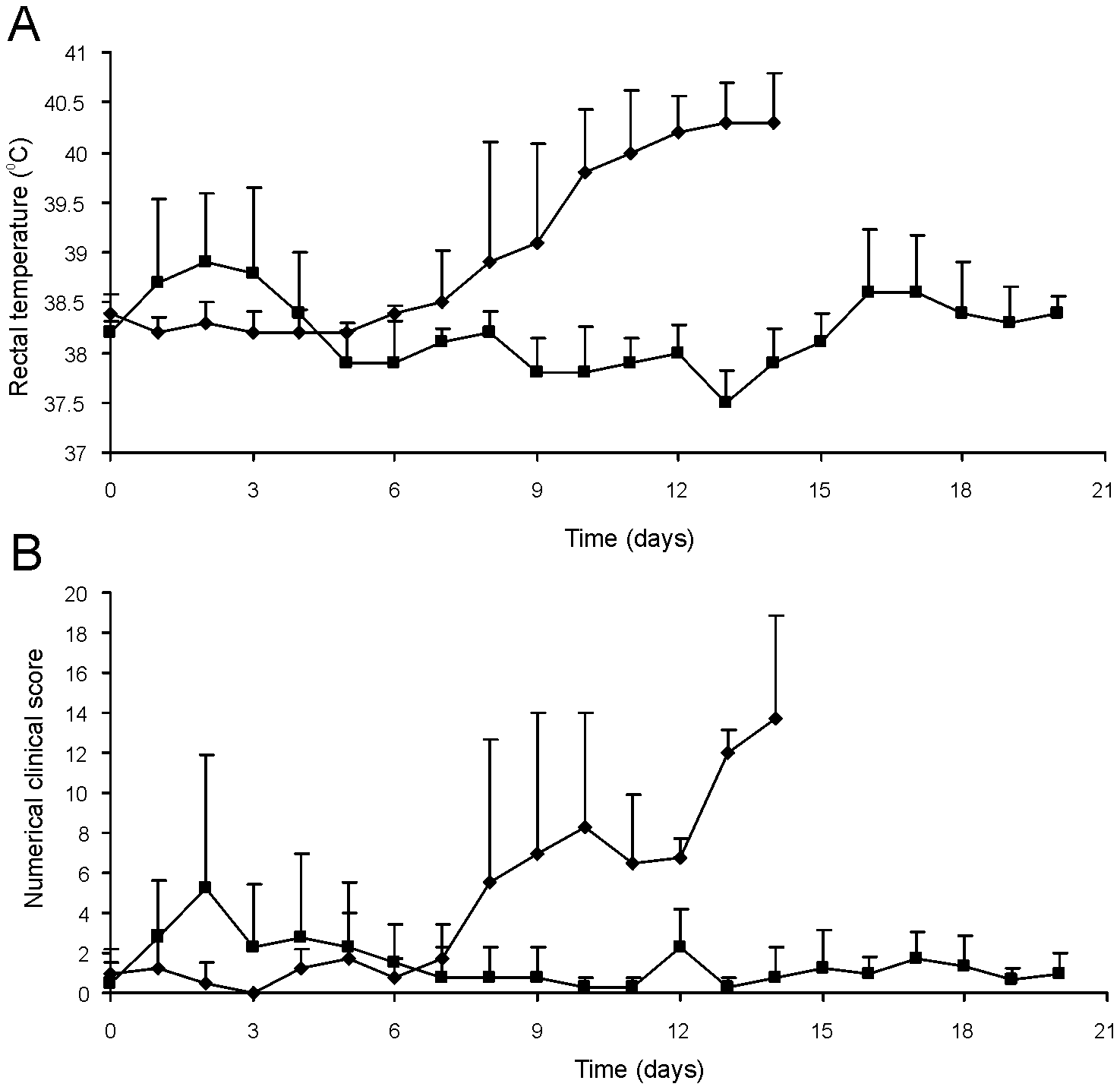 Oral immunization and subsequent intratracheal challenge of foals.