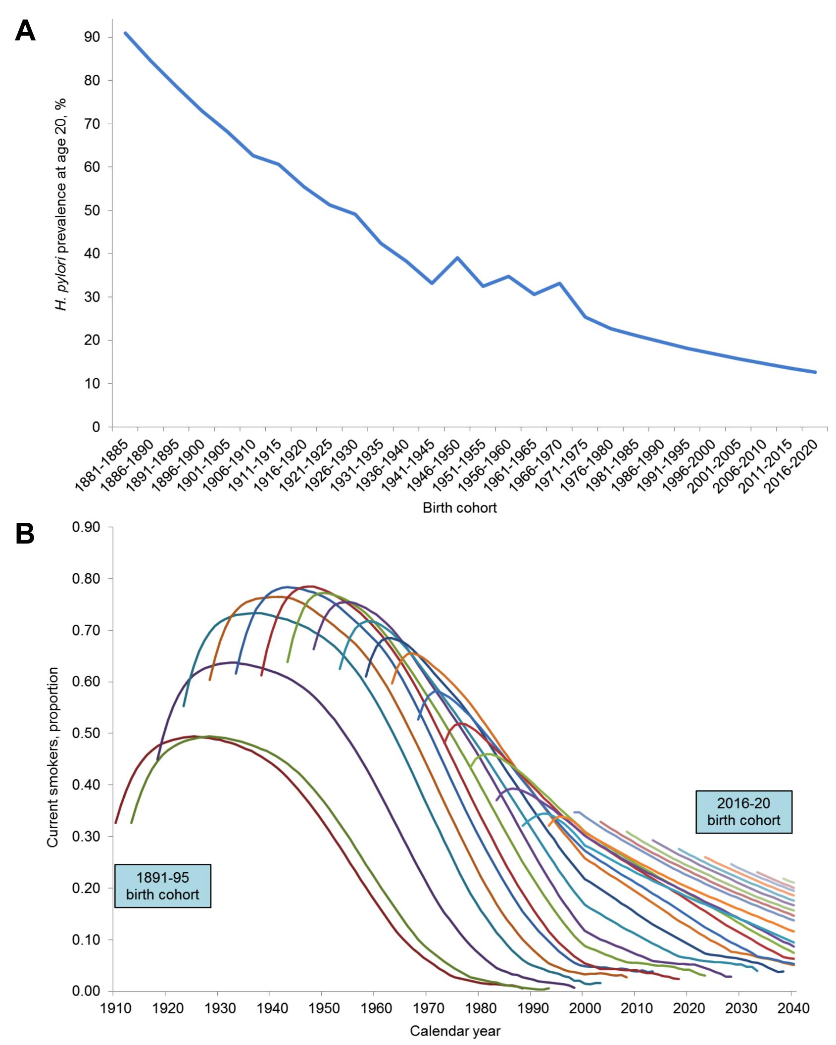 Birth cohort risk factor profiles.