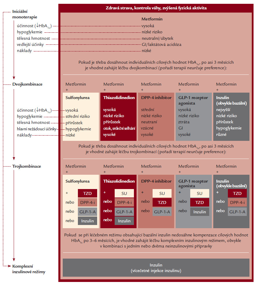 Algoritmus léčby hyperglykemie (upraveno podle doporučení ADA a EASD 2012).