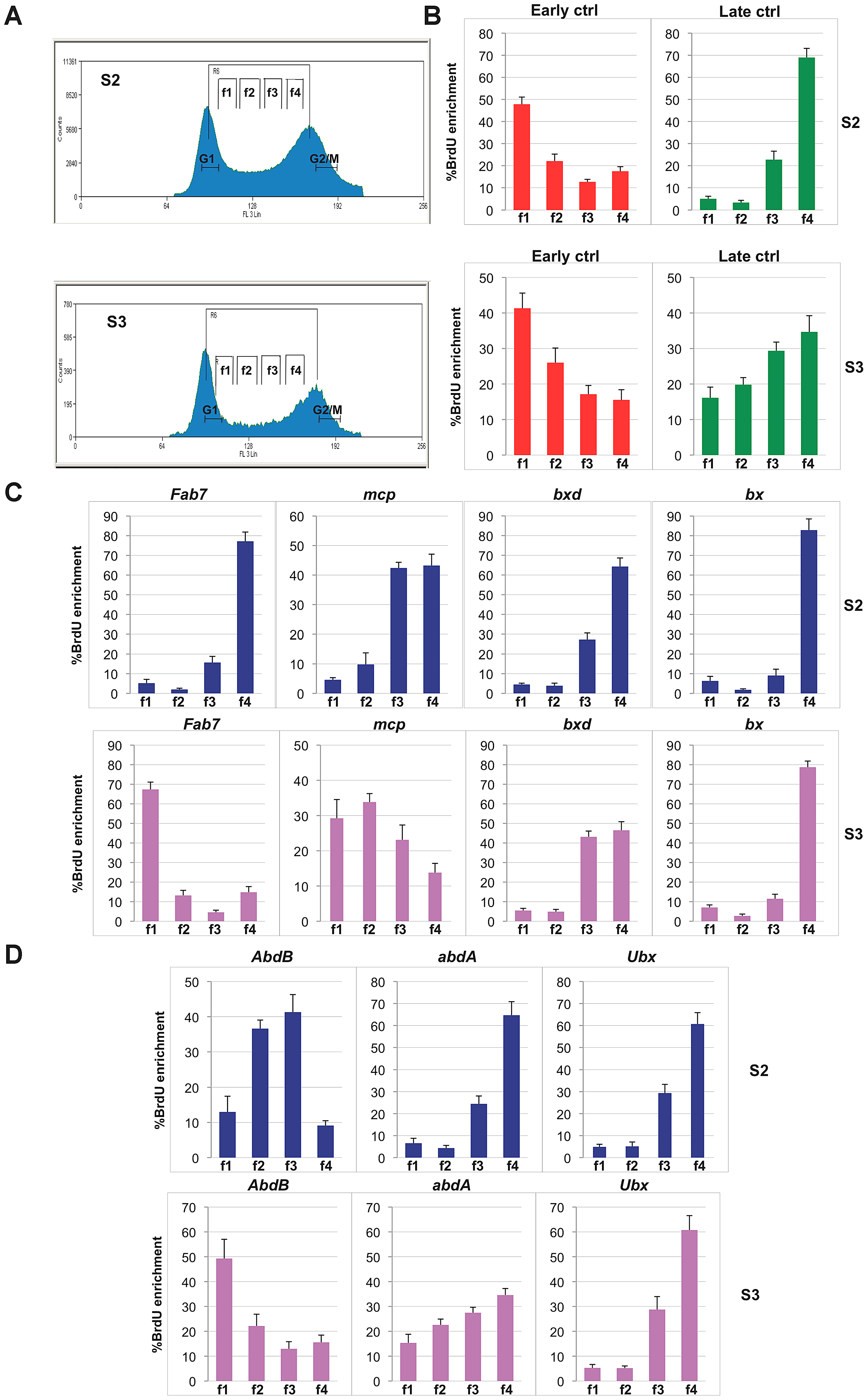 Different replication timing profiles at BX-C PREs in S2 and S3 cell lines.