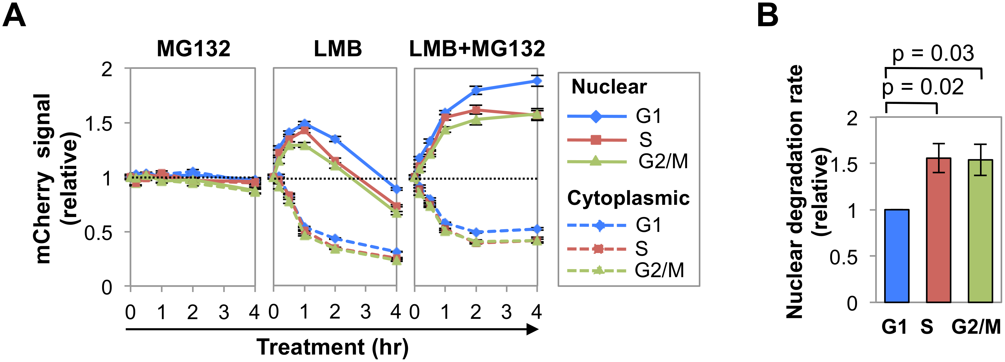 Nuclear AID is degraded more slowly in G1 phase than S-G2/M phases.