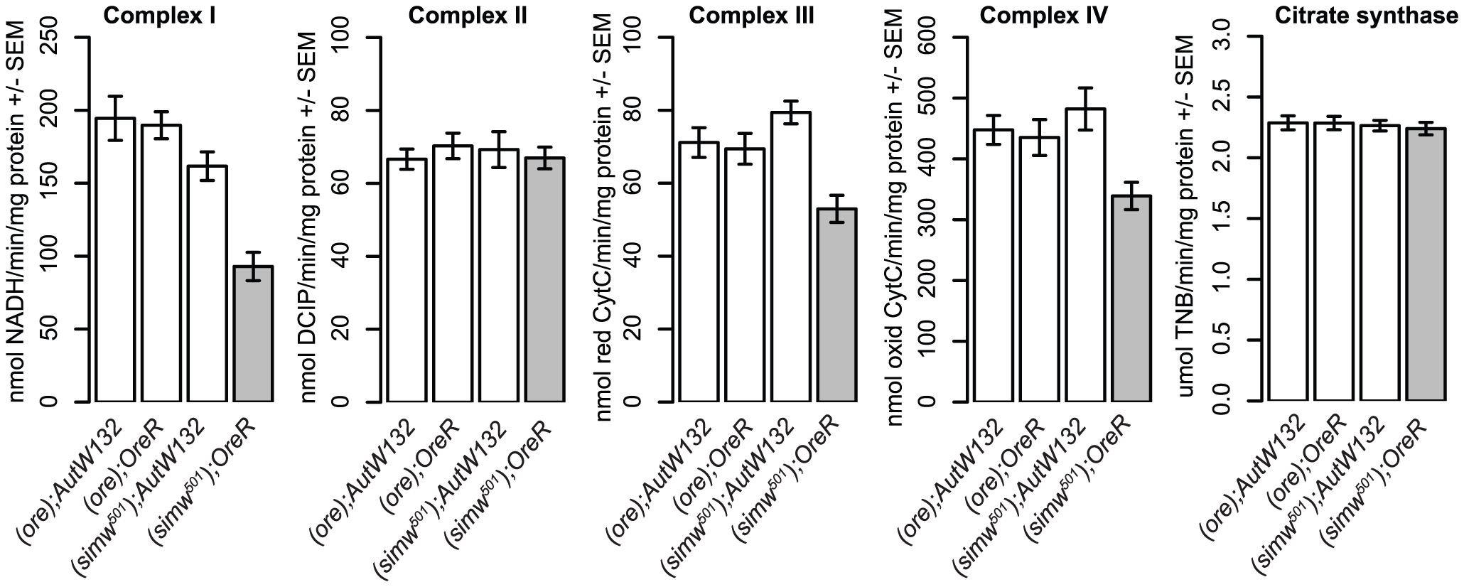The mitochondrial-nuclear incompatibility decreases the activity of OXPHOS complexes that are mitochondrially translated.