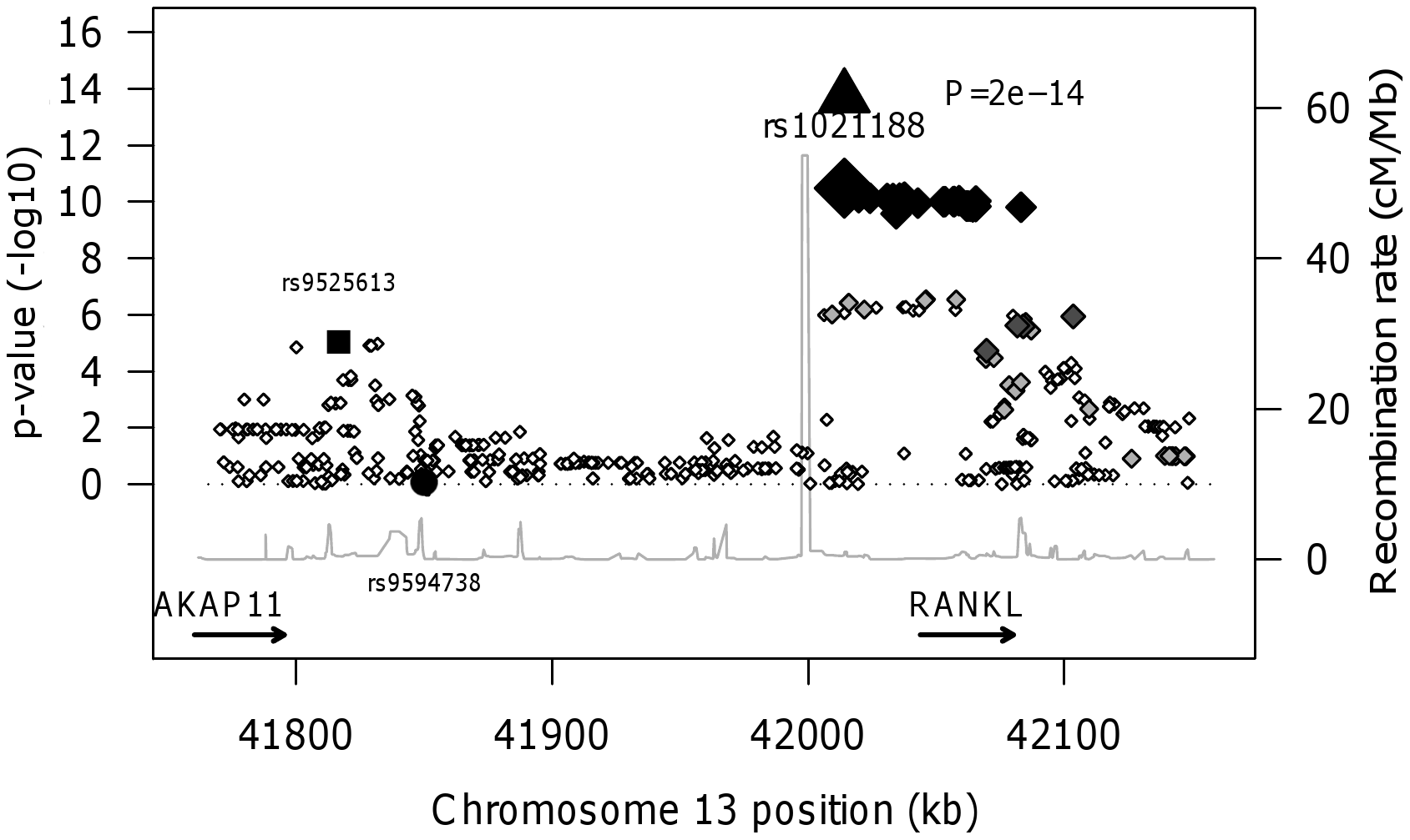 RANKL regional association plot of the ALSPAC and GOOD genome-wide meta-analysis of BMD<sub>C</sub>.
