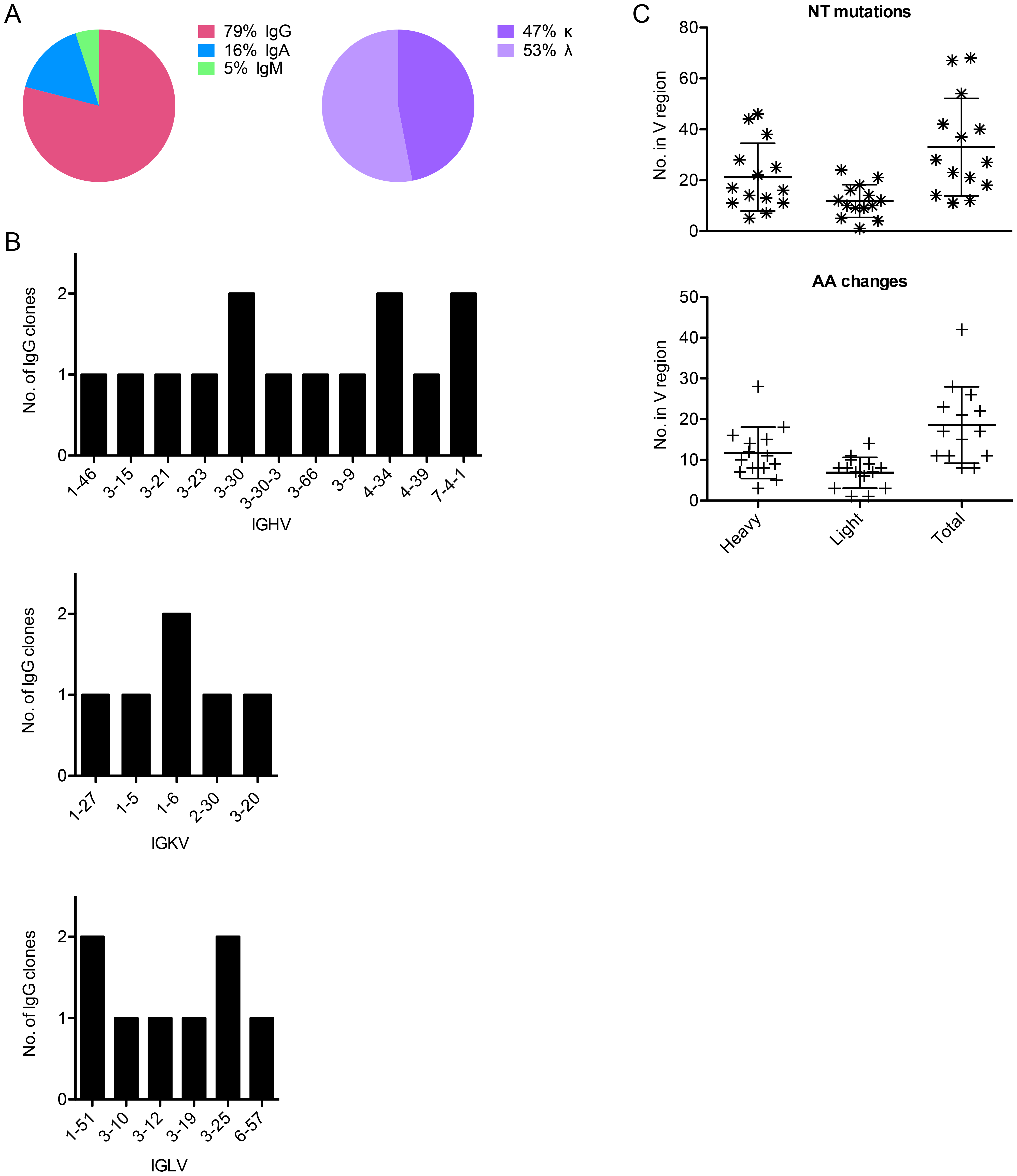 Sequence characteristics of Abs cloned from HPV 16-specific Bmem.