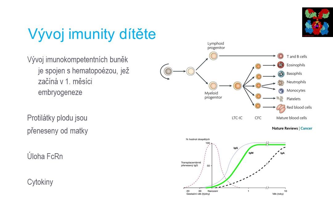 Imunodeficience - 8