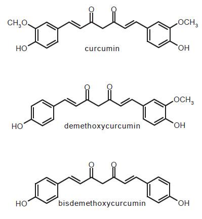 Fig. 1. Structure of curcumin, demethoxycurcumin and bisdemethoxycurcumin