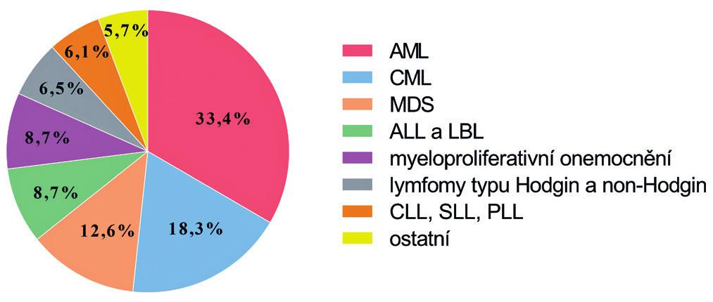 Rozdělení souboru pacientů podle diagnostických skupin