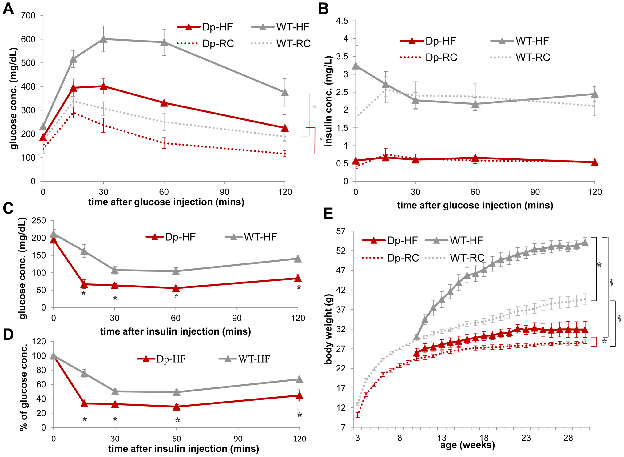 WT mice (gray) display a greater increase in insulin resistance than <i>Dp(11)17/+</i> mice (red) after HF diet from 19 to 22 weeks as well as an increased weight gain after a long-term HF diet.