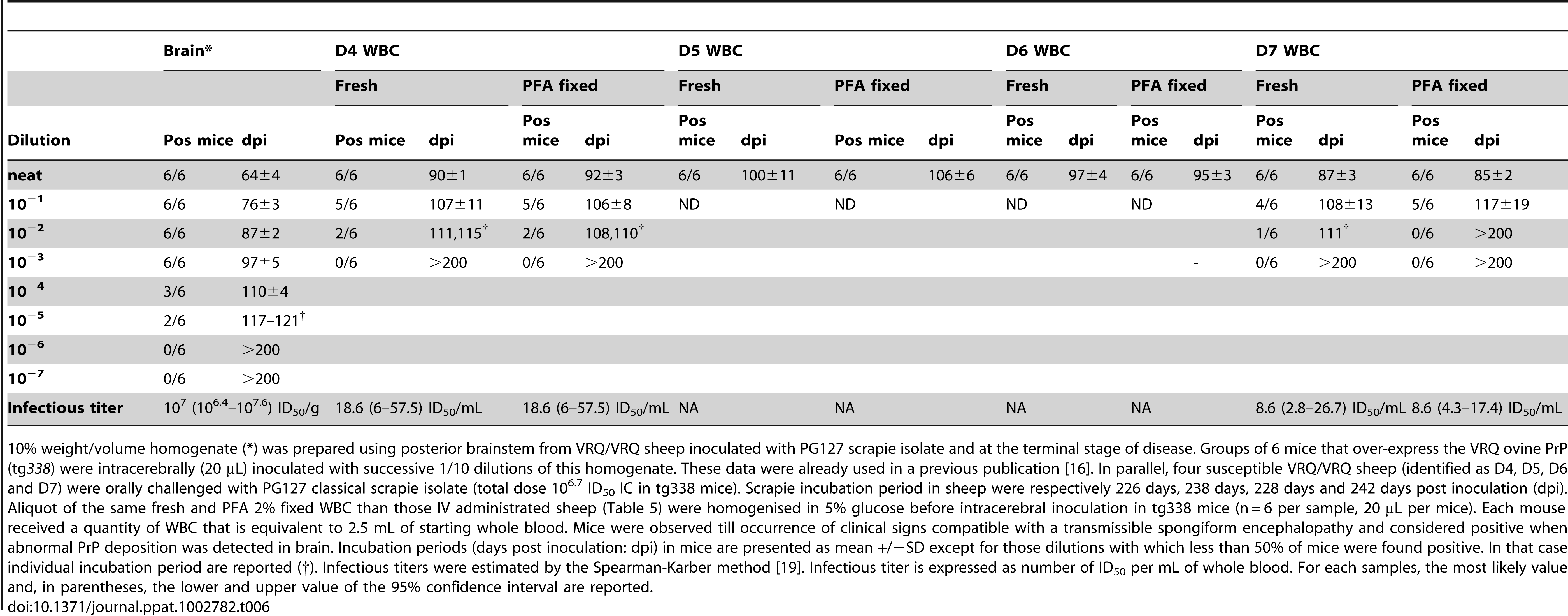 End-point titration in tg338 mice of a 10% brain homogenate and white blood cells samples, collected in VRQ/VRQ sheep orally inoculated with PG127 scrapie.