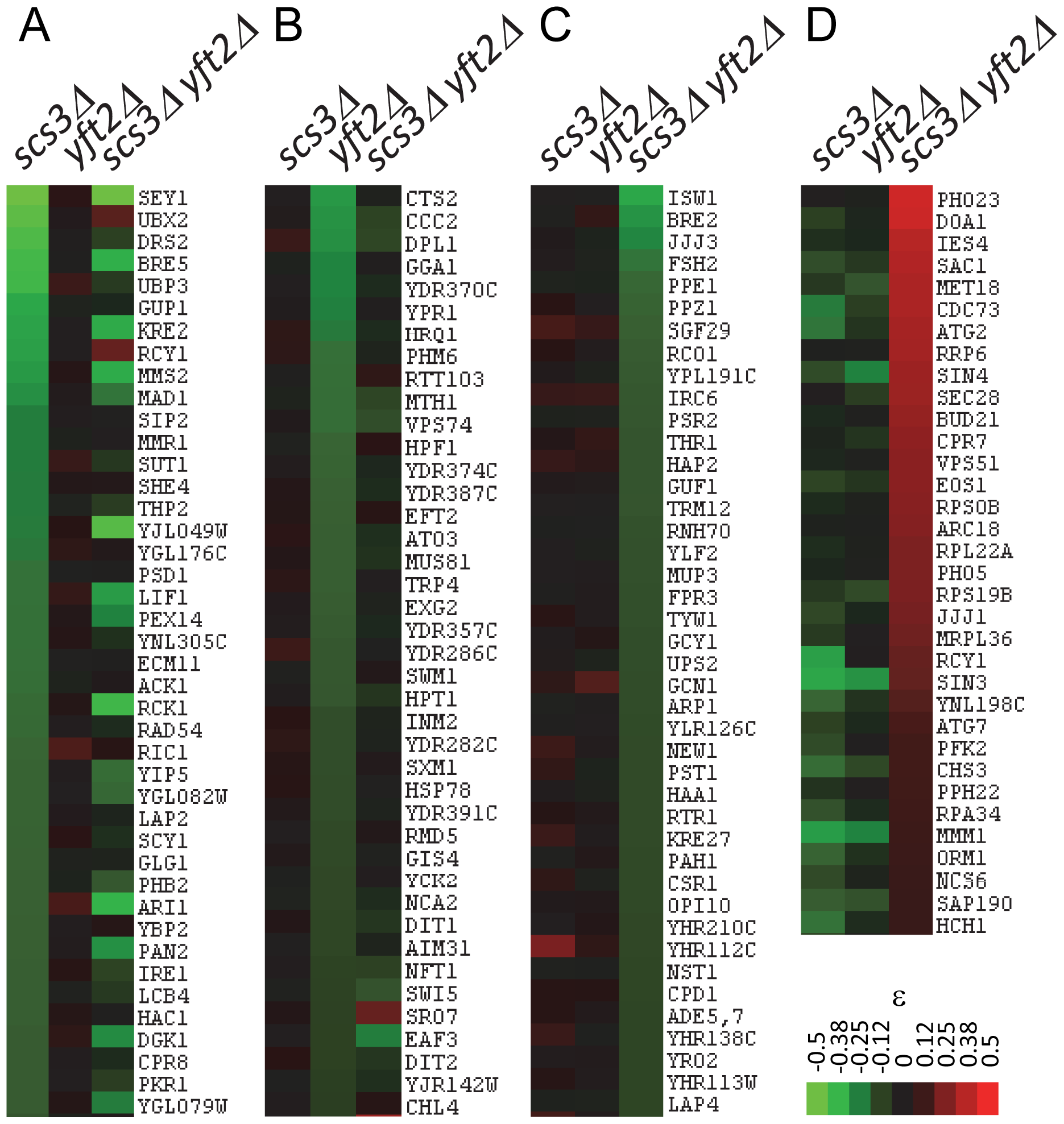 Representative genetic interactions obtained in SGA screens with <i>SCS3</i> and <i>YFT2</i> gene-deletion strains.