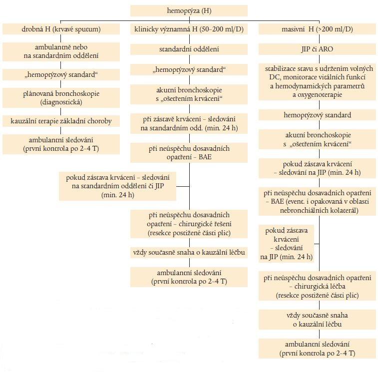 Schéma. Zjednodušený terapeutický algoritmus hemoptýzy.