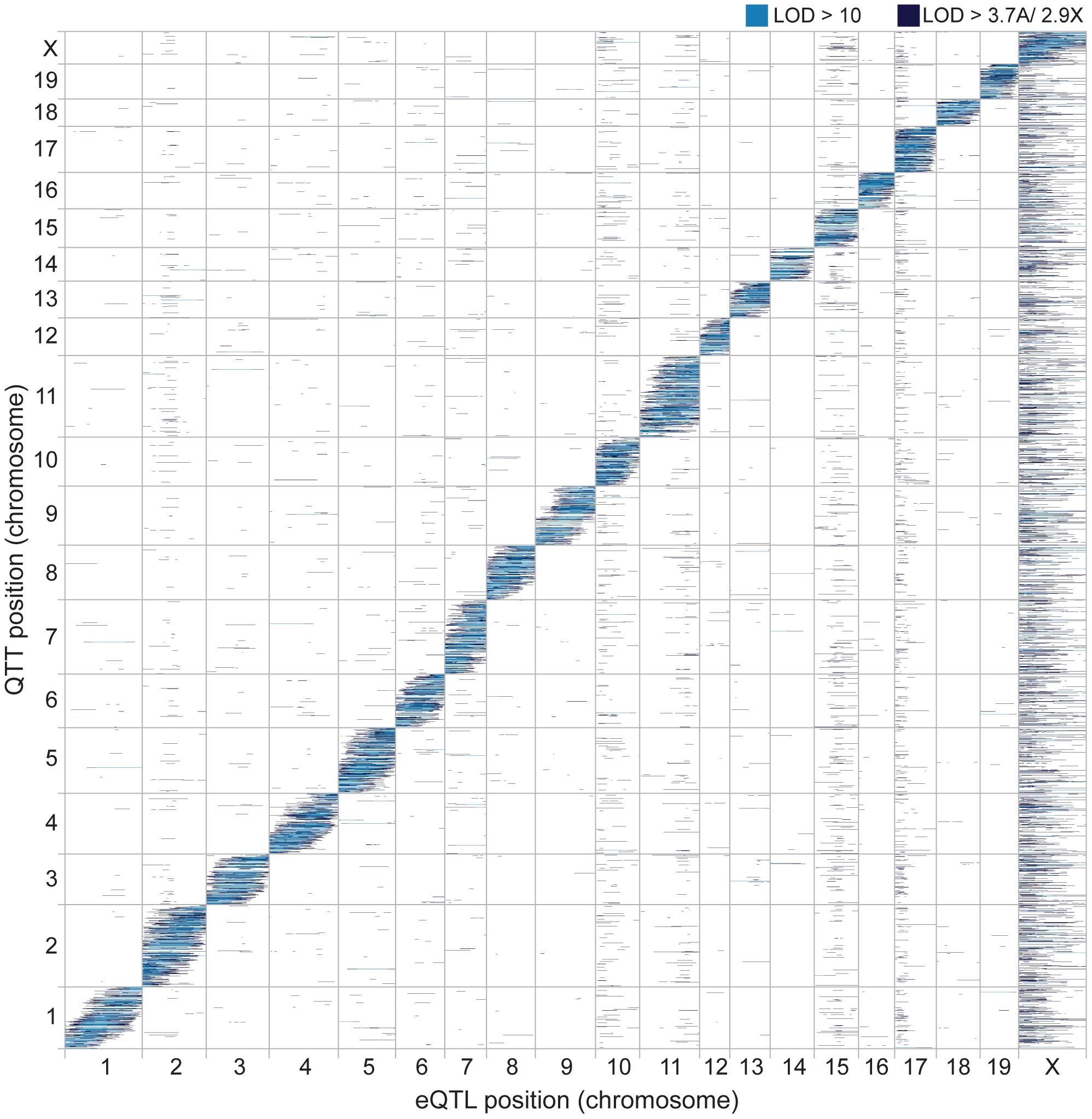 Genomic distribution of eQTL and QTT.