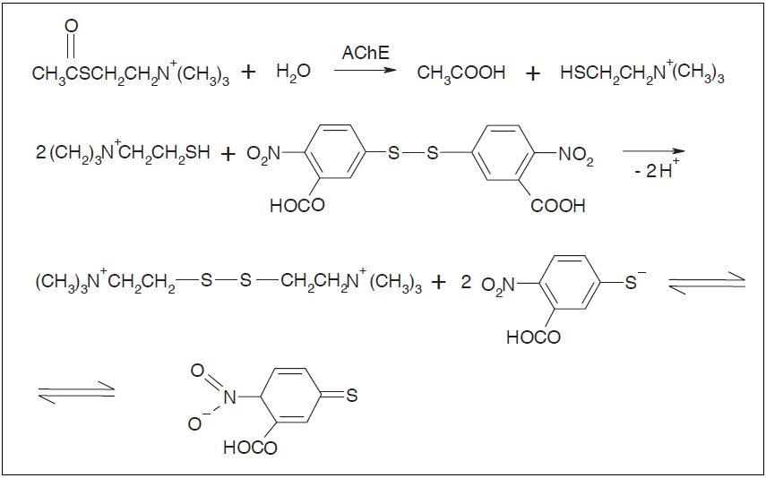 Hydrolýza substrátu a reakce thiocholinu s Ellmanovým činidlem<sup>1)</sup>