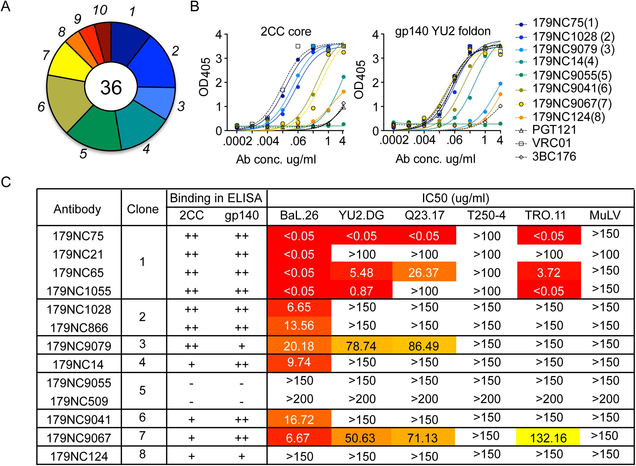 2CC core antibody repertoire in patient EB179.