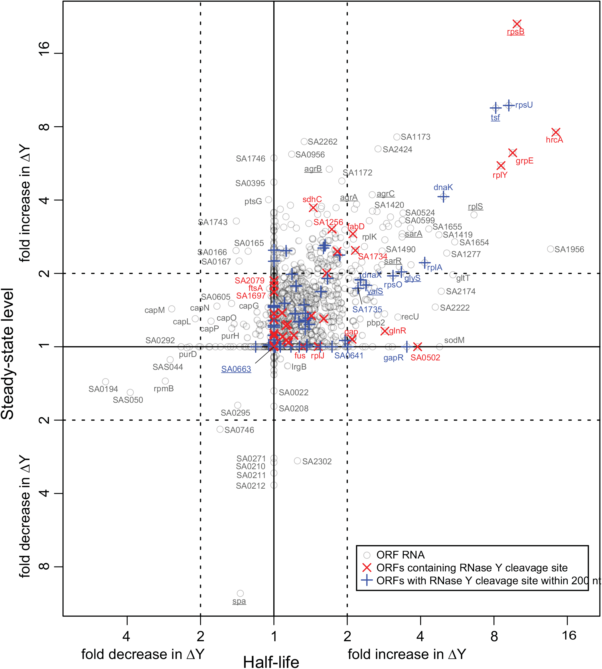 Correlation between changes in half-lives and steady-state levels.