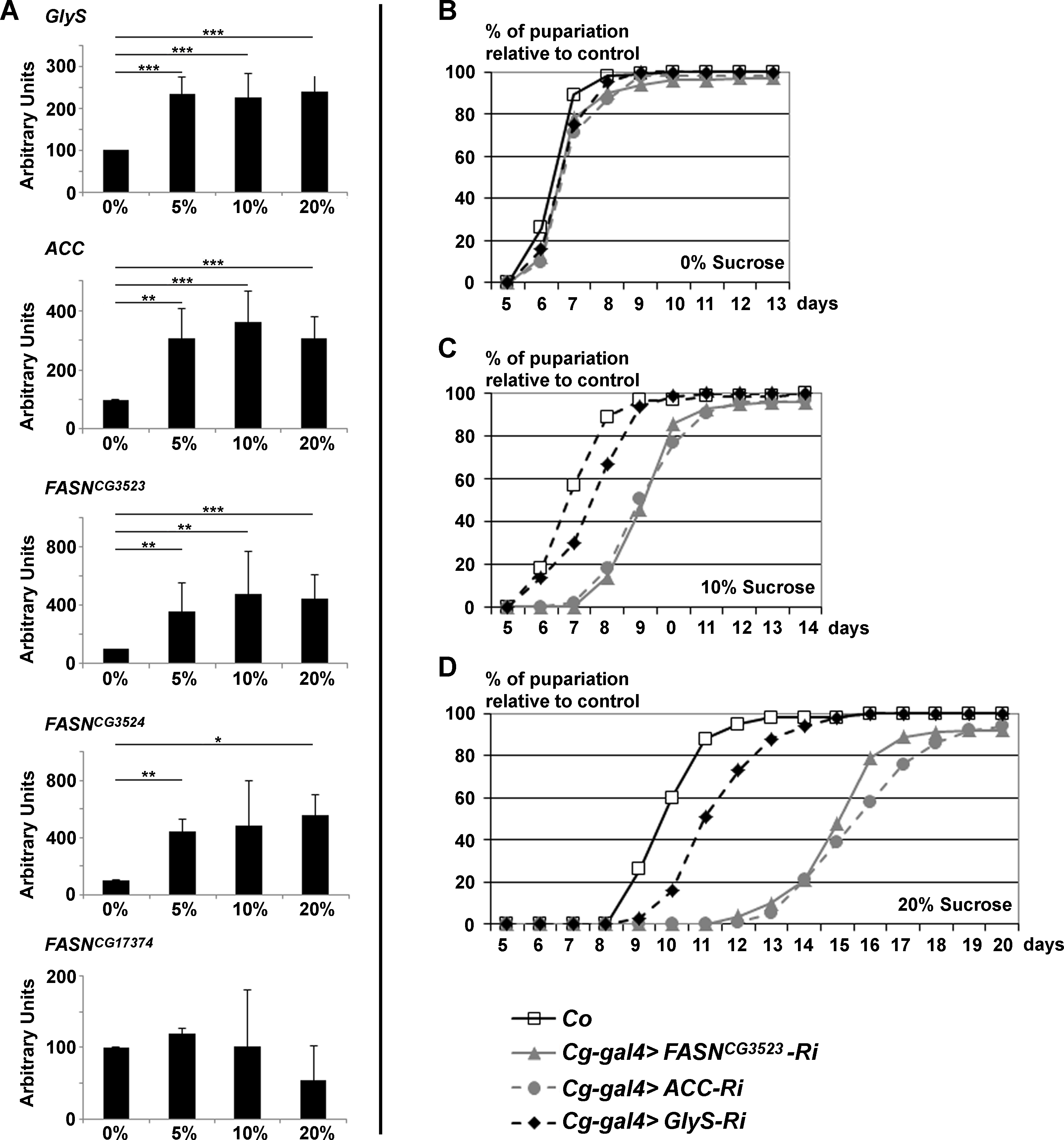 <i>GlyS</i>, <i>ACC and FASN</i><sup><i>CG3523</i></sup> expression is induced by and protects from dietary sugar.