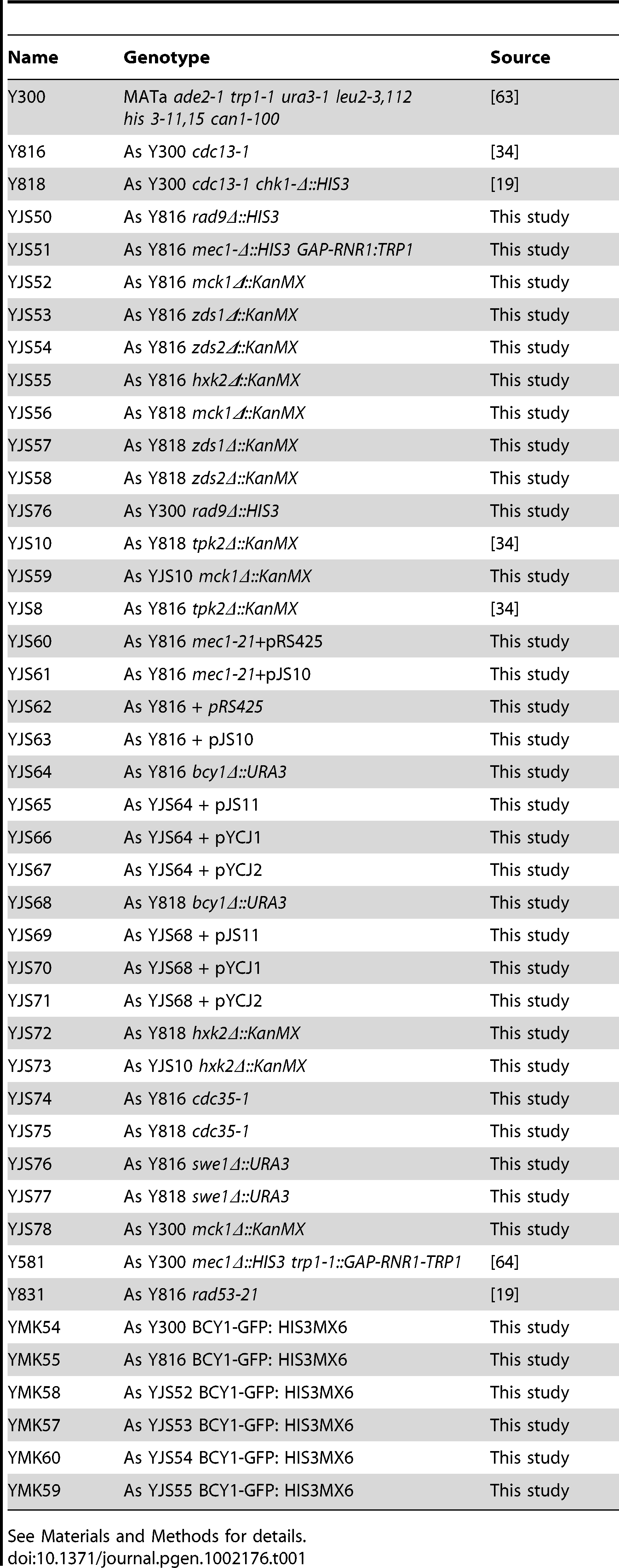 Yeast strains used in these studies.
