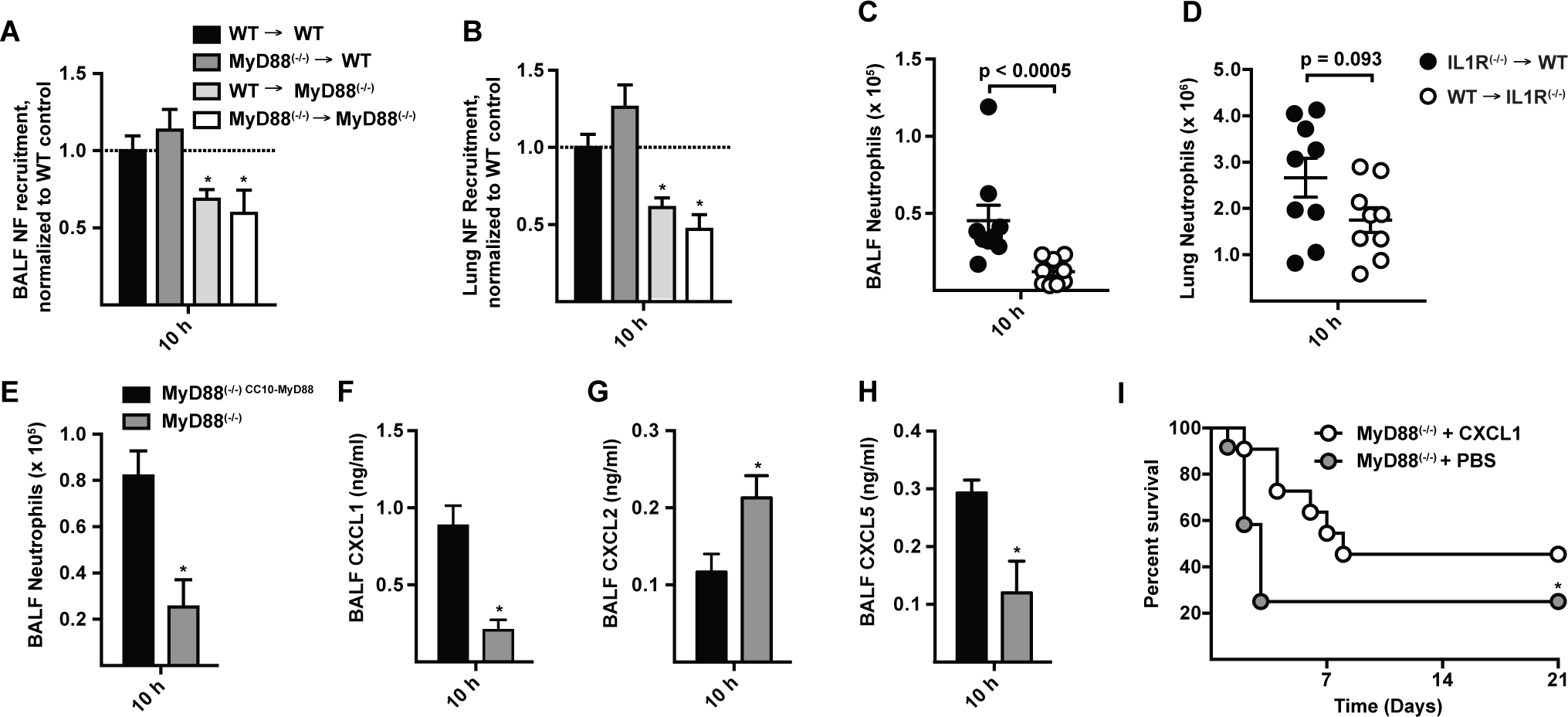CXCL1 is controlled by MyD88 in lung epithelial cells and prolongs survival in MyD88<sup>(−/−)</sup> mice following <i>A. fumigatus</i> challenge.