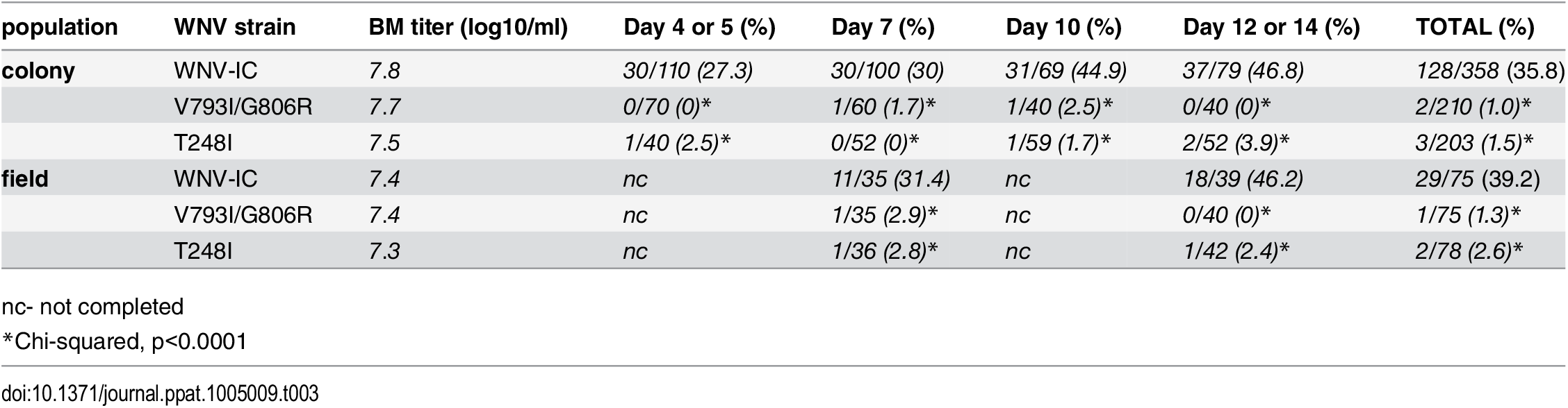 WNV infection rates (total WNV positive/total tested) of <i>Cx</i>. <i>quinqufasciatus</i> following exposure to an infectious bloodmeal.