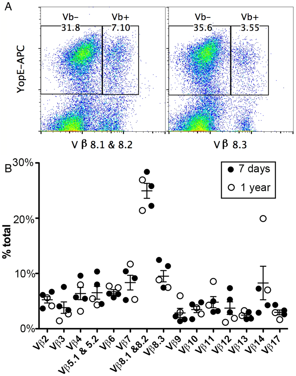 TCR Vβ subset distribution in ET cells.