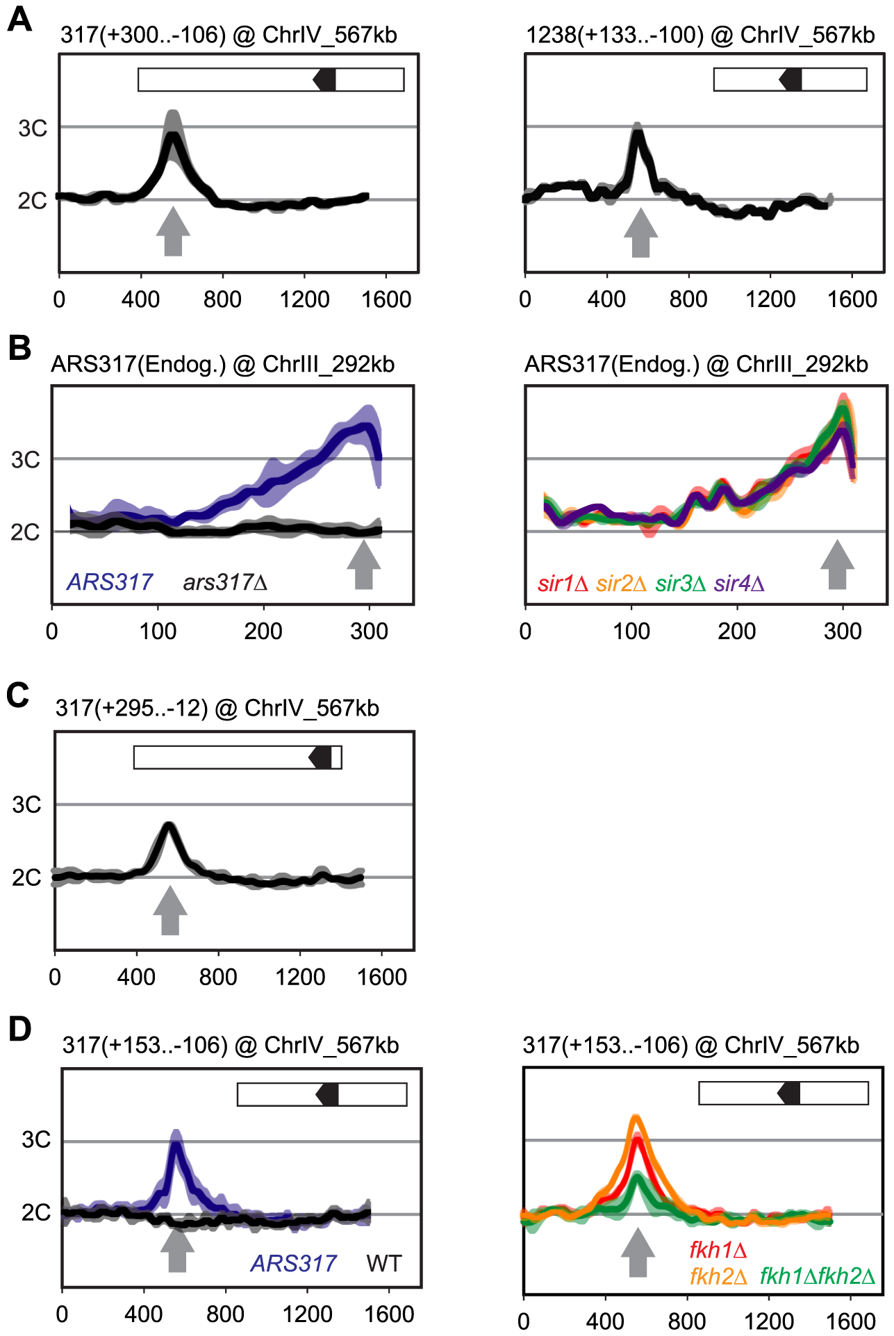 Local determinants and not chromatin context confer preferential re-initiation on <i>ARS317</i> and <i>ARS1238</i>.