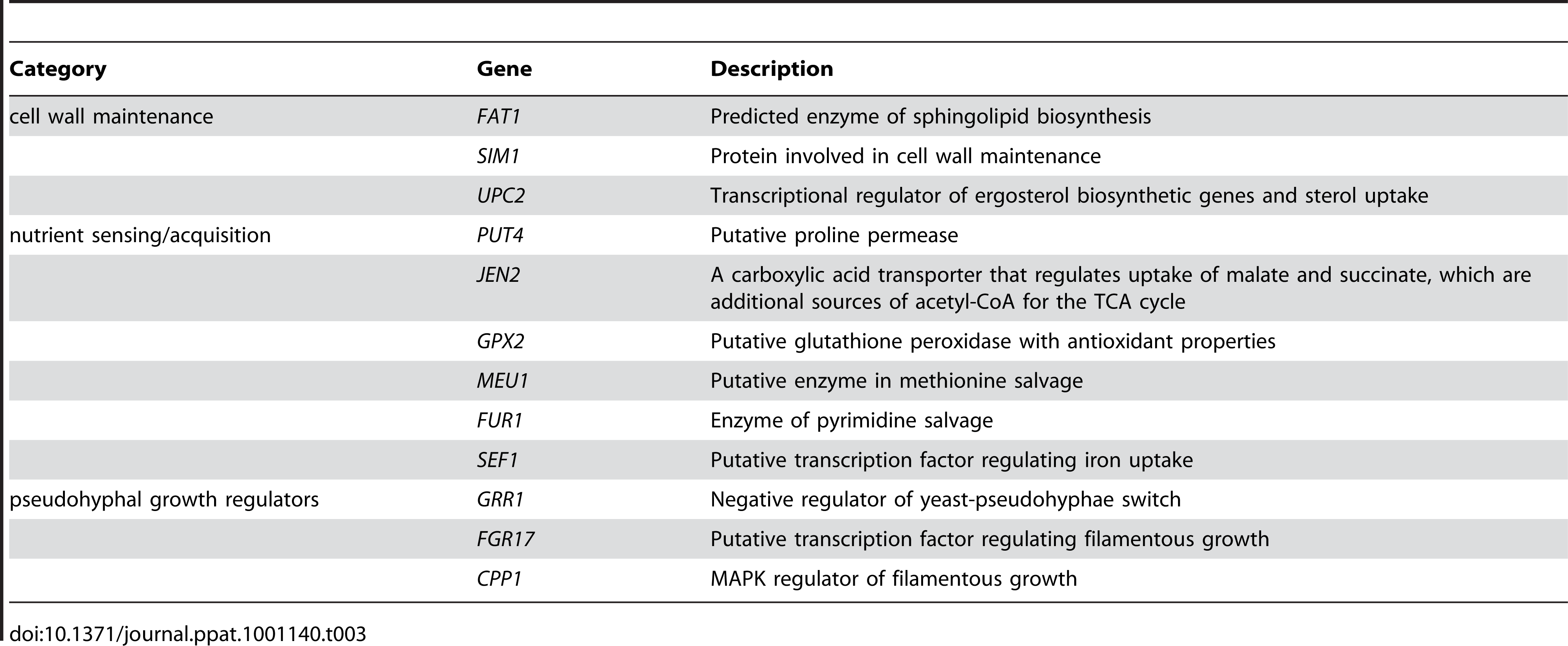 Categories of genes haploinsufficient in reduced-nutrient conditions.