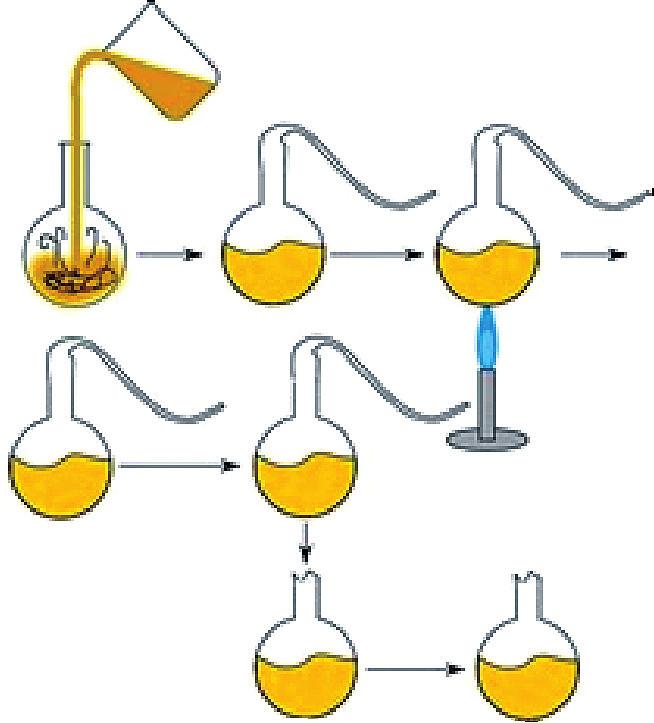 Princip Pasteurových experimentů zamítajících spontánní vznik života.