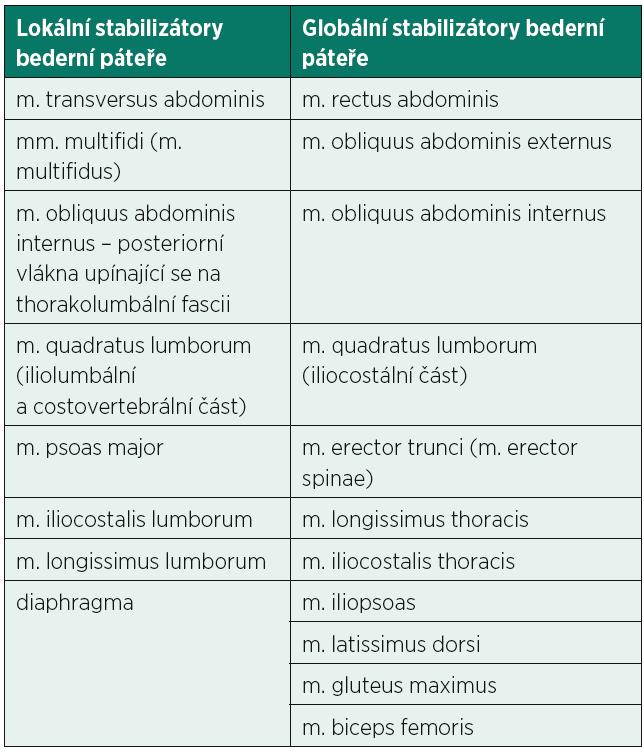 Lokální a globální stabilizátory bederní páteře (30, 40).