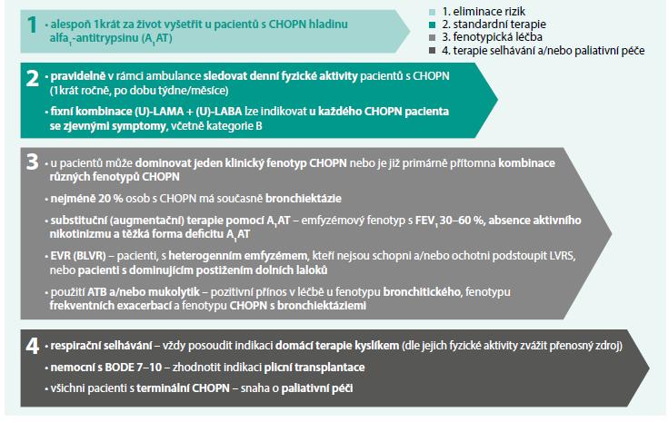 Schéma 3. Stručný přehled novinek v Doporučených postupech pro diagnostiku a léčbu CHOPN z roku 2016