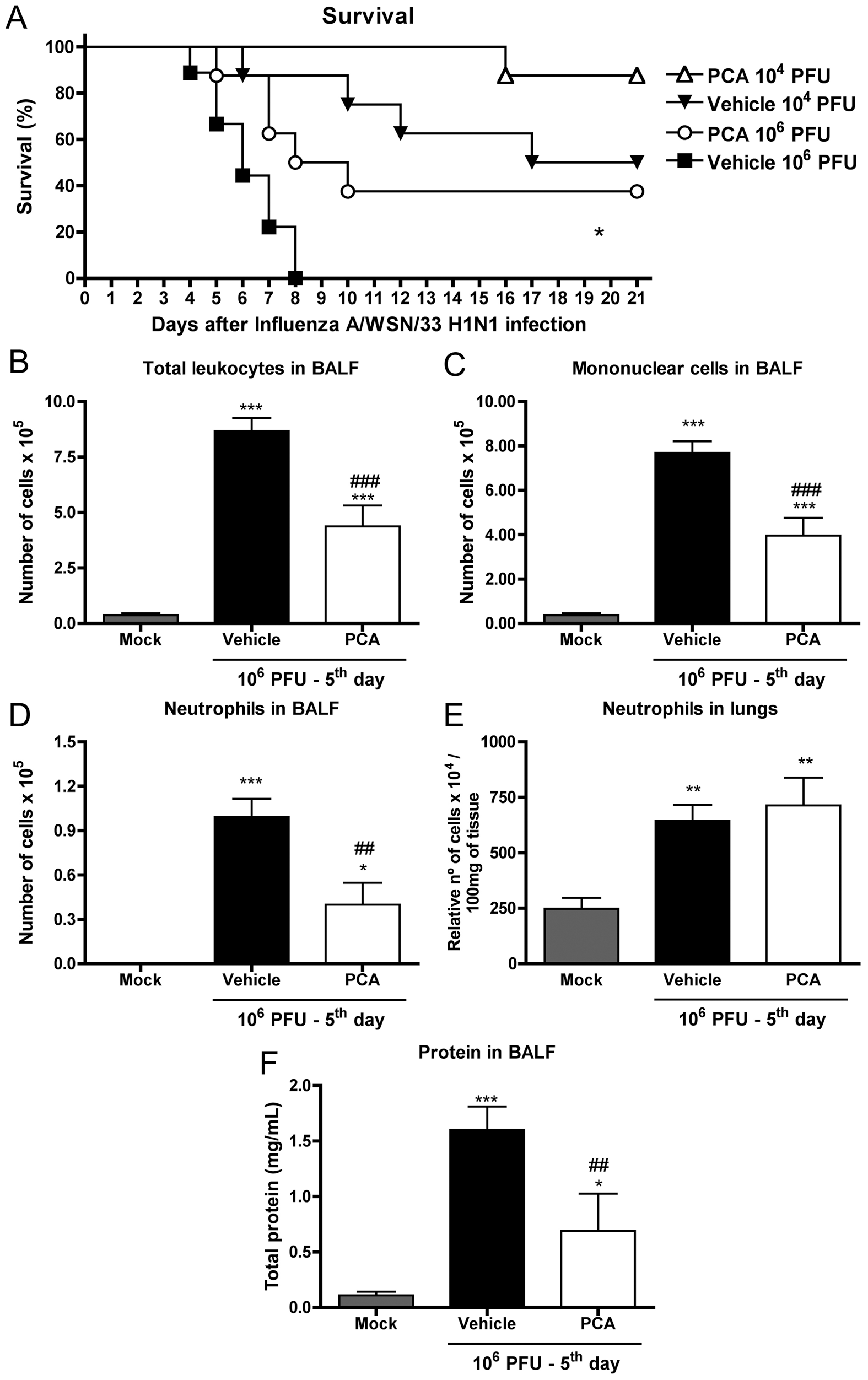 Treatment with a PAFR antagonist confers protection to mice infected with Influenza A/WSN/33 H1N1.
