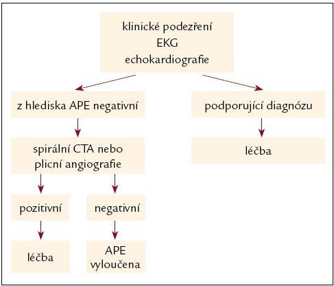 Algoritmus diagnostiky akutní masivní plicní embolie (hemodynamicky nestabilní) [6].