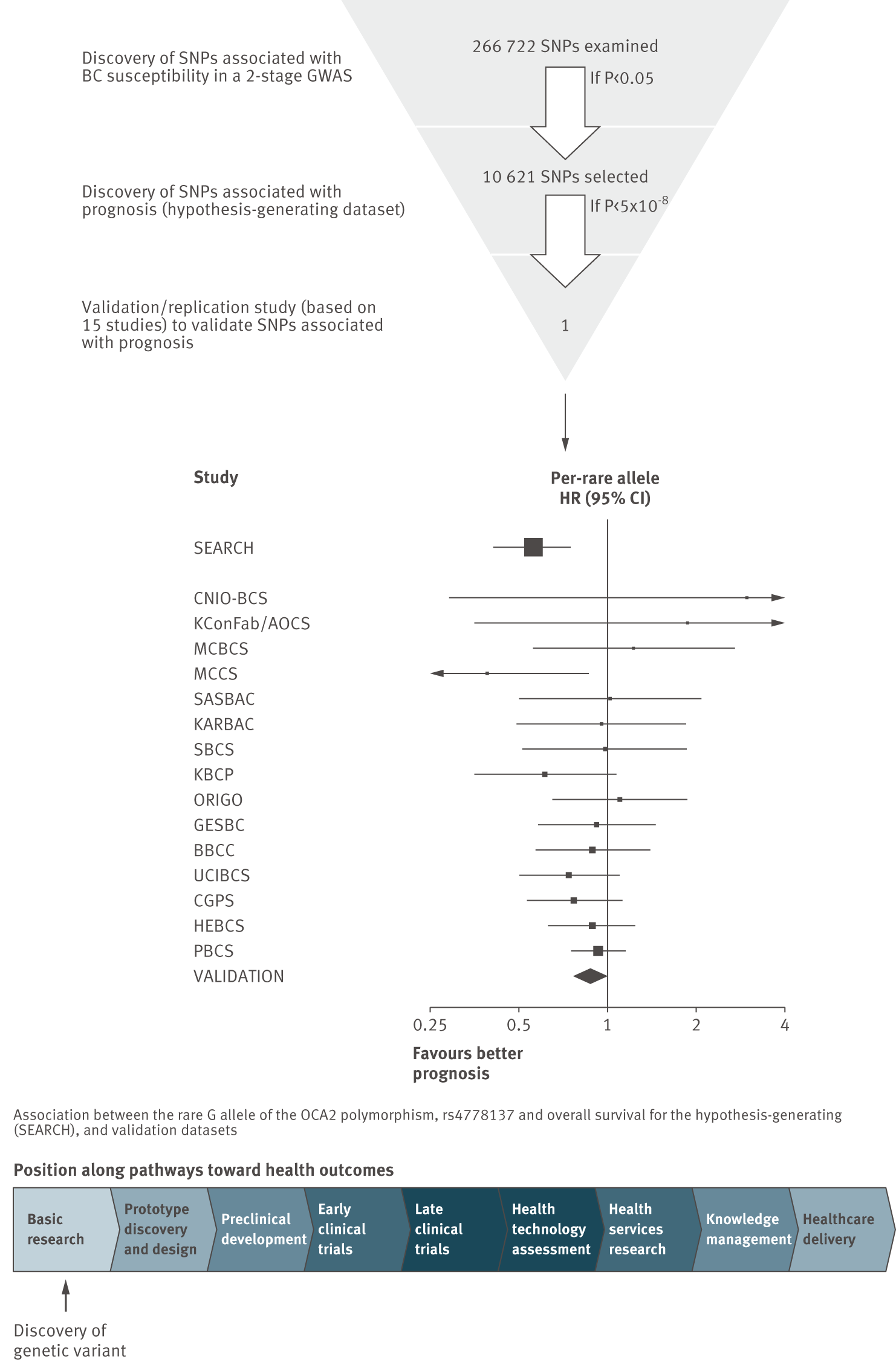 Discovery of prognostic factors: a genome-wide association study of survival among people with breast cancer, and replication in 15 studies (Mid-figure forest plot based on example plots in <em class=&quot;ref&quot;>[4]</em>.