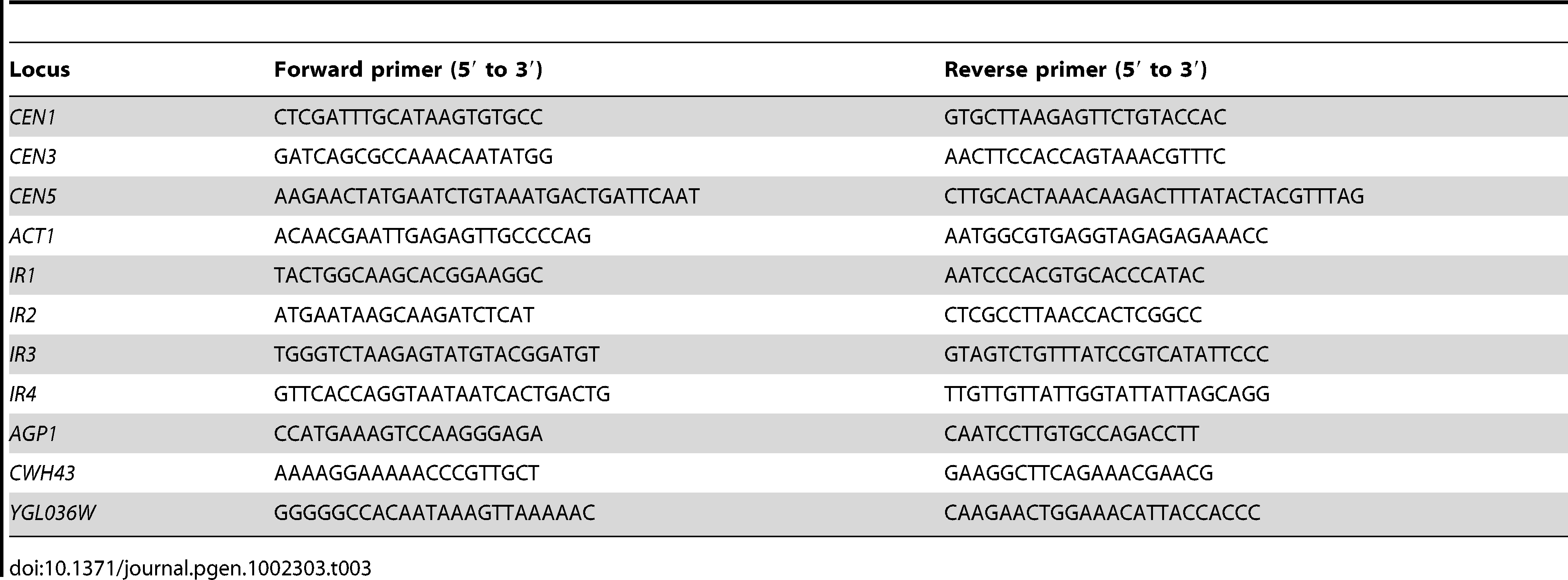 List of primers used in this study.